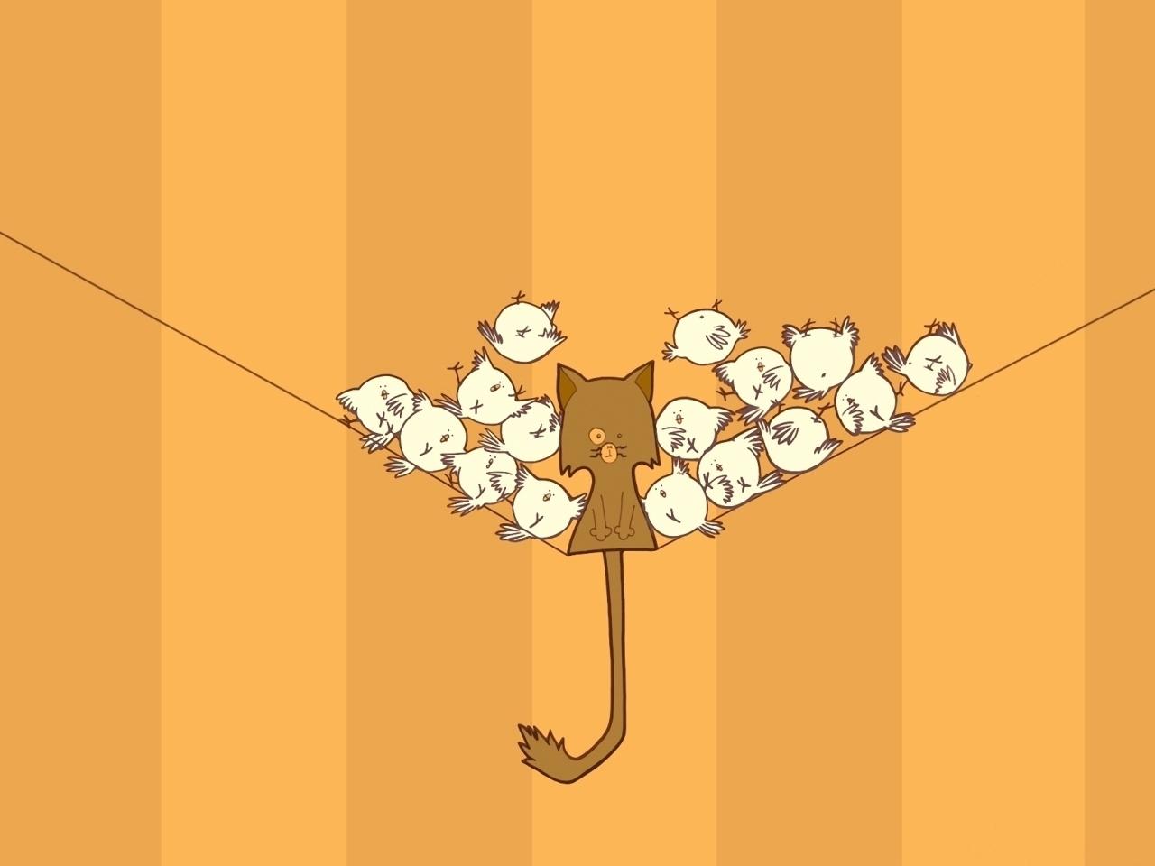 24474 скачать обои Юмор, Животные, Кошки (Коты, Котики), Птицы - заставки и картинки бесплатно