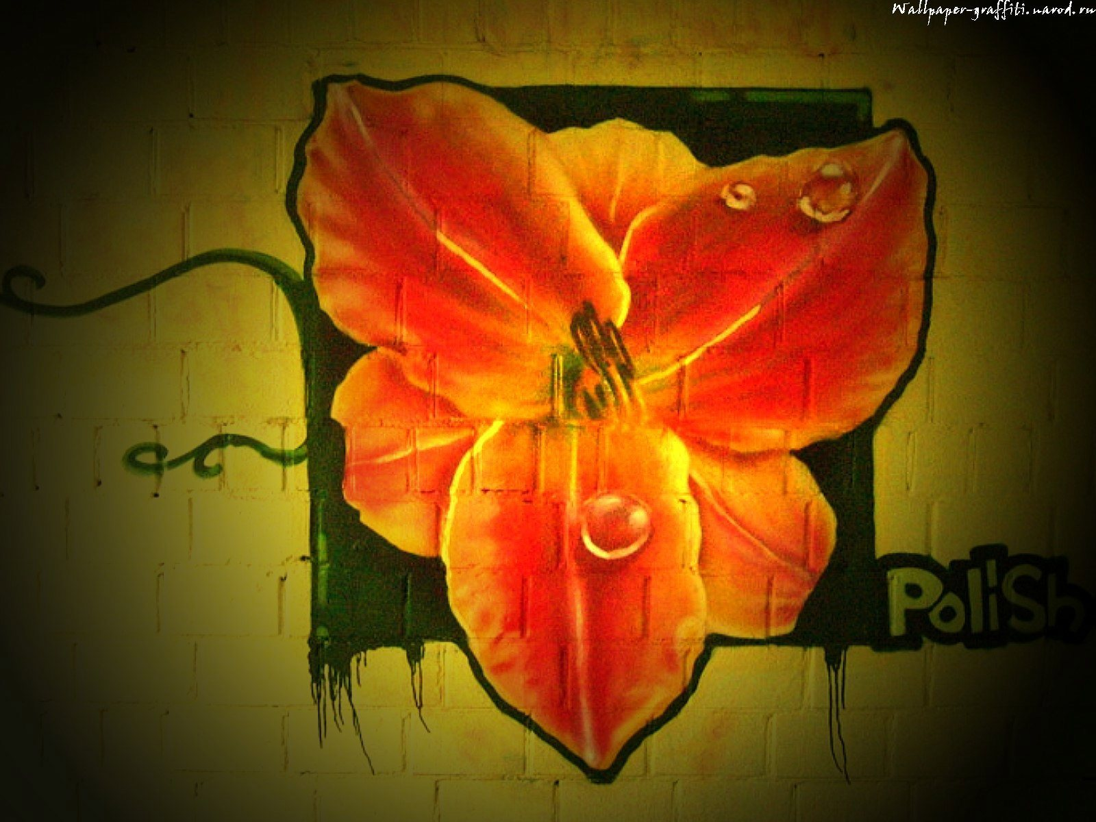 14458 скачать обои Цветы, Рисунки - заставки и картинки бесплатно