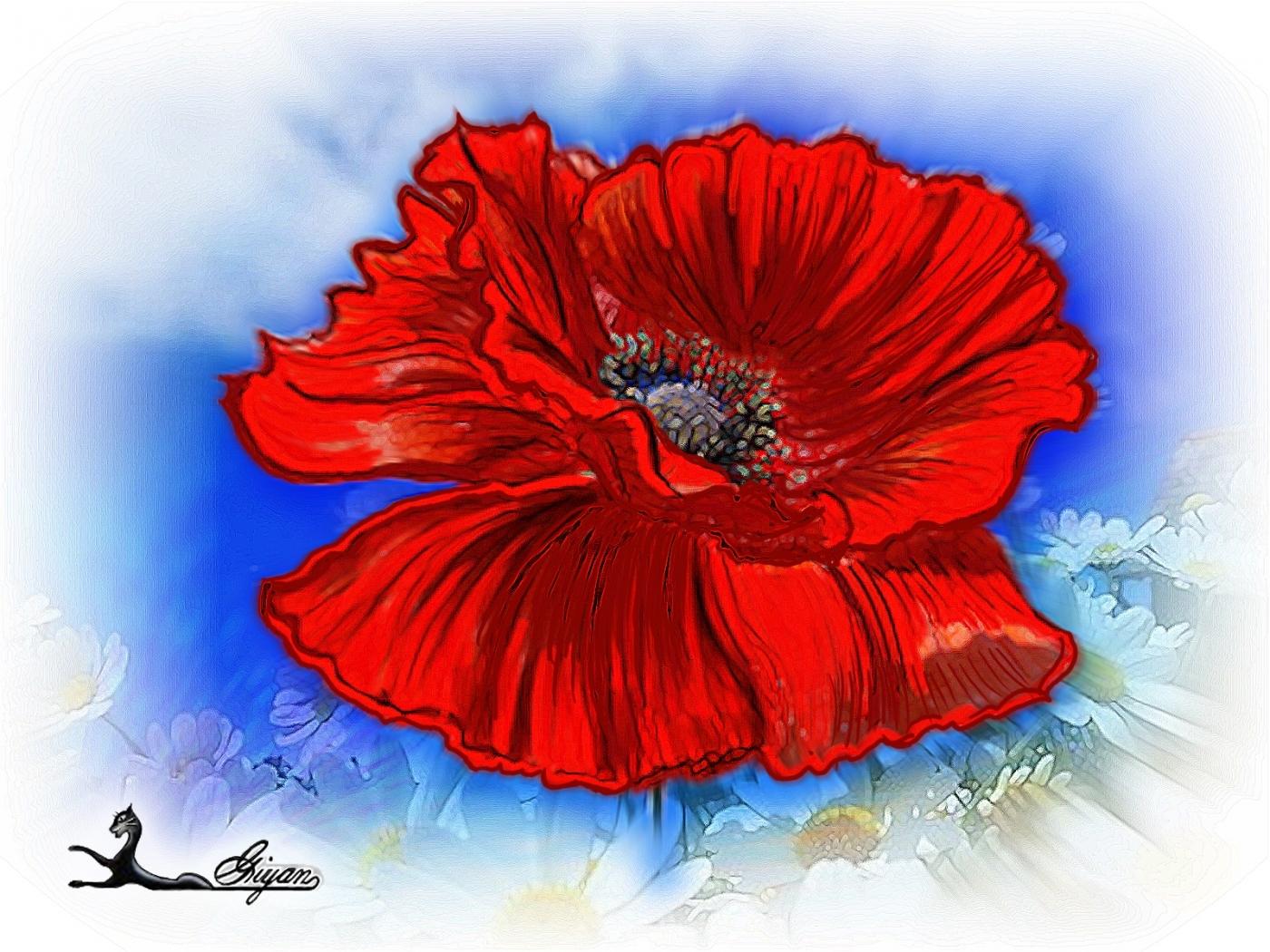24924 скачать обои Растения, Цветы, Маки, Рисунки - заставки и картинки бесплатно