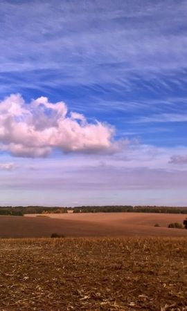 27132 скачать обои Пейзаж, Поля, Небо, Облака - заставки и картинки бесплатно