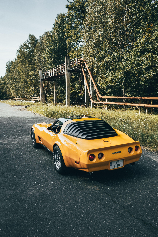 123575 скачать обои Тачки (Cars), Автомобиль, Спорткар, Вид Сзади, Corvette, Желтый - заставки и картинки бесплатно