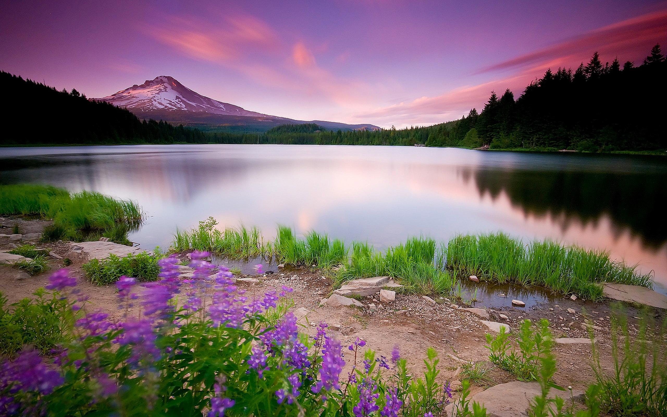 49683 Заставки и Обои Озера на телефон. Скачать Озера, Пейзаж, Природа картинки бесплатно