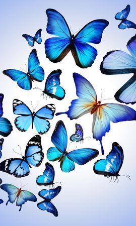121254 descargar fondo de pantalla Mariposas, Multicolor, Abigarrado, Imagen, Dibujo, Arte, Generosamente, Es Hermoso: protectores de pantalla e imágenes gratis