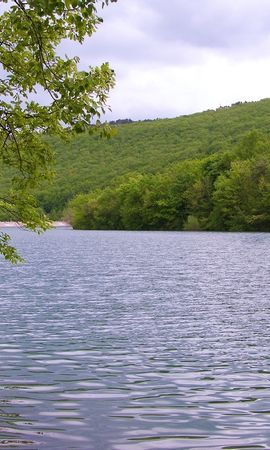 8018 скачать обои Пейзаж, Природа, Река, Деревья, Лето - заставки и картинки бесплатно