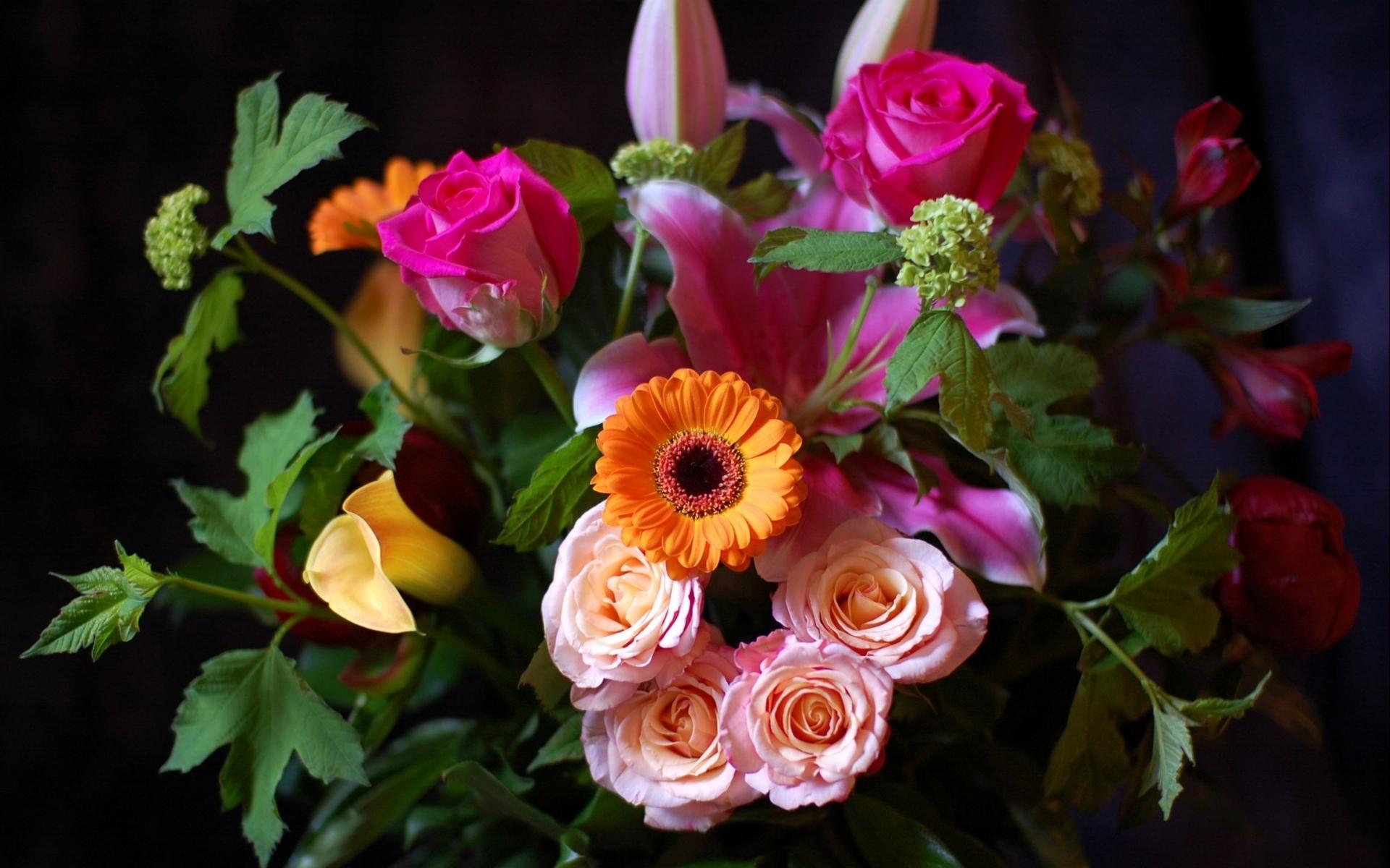 38511 скачать обои Растения, Цветы, Букеты - заставки и картинки бесплатно
