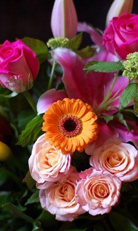 38511 télécharger le fond d'écran Plantes, Fleurs, Bouquets - économiseurs d'écran et images gratuitement