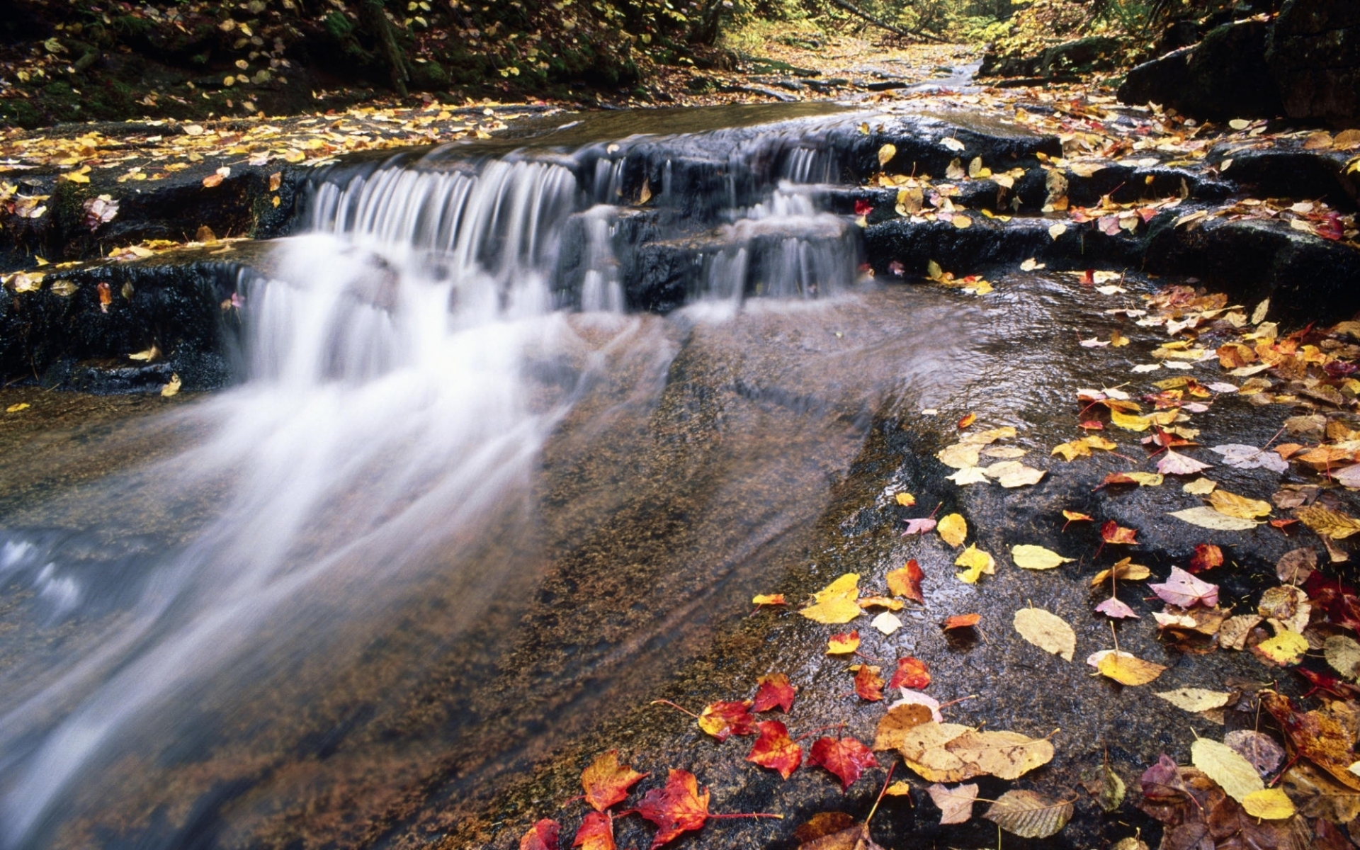 27112 download wallpaper Landscape, Rivers, Autumn, Leaves screensavers and pictures for free