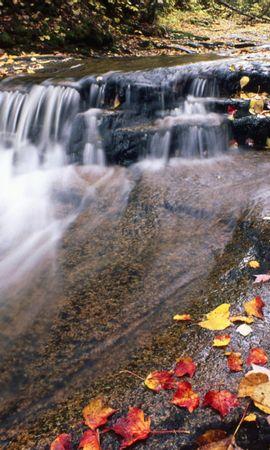 27112 скачать обои Пейзаж, Река, Осень, Листья - заставки и картинки бесплатно