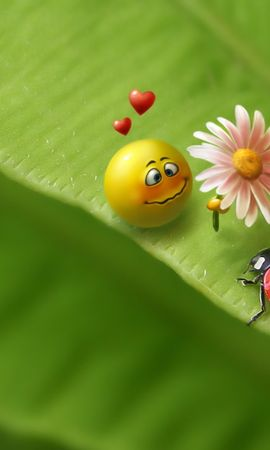 1088 download wallpaper Funny screensavers and pictures for free