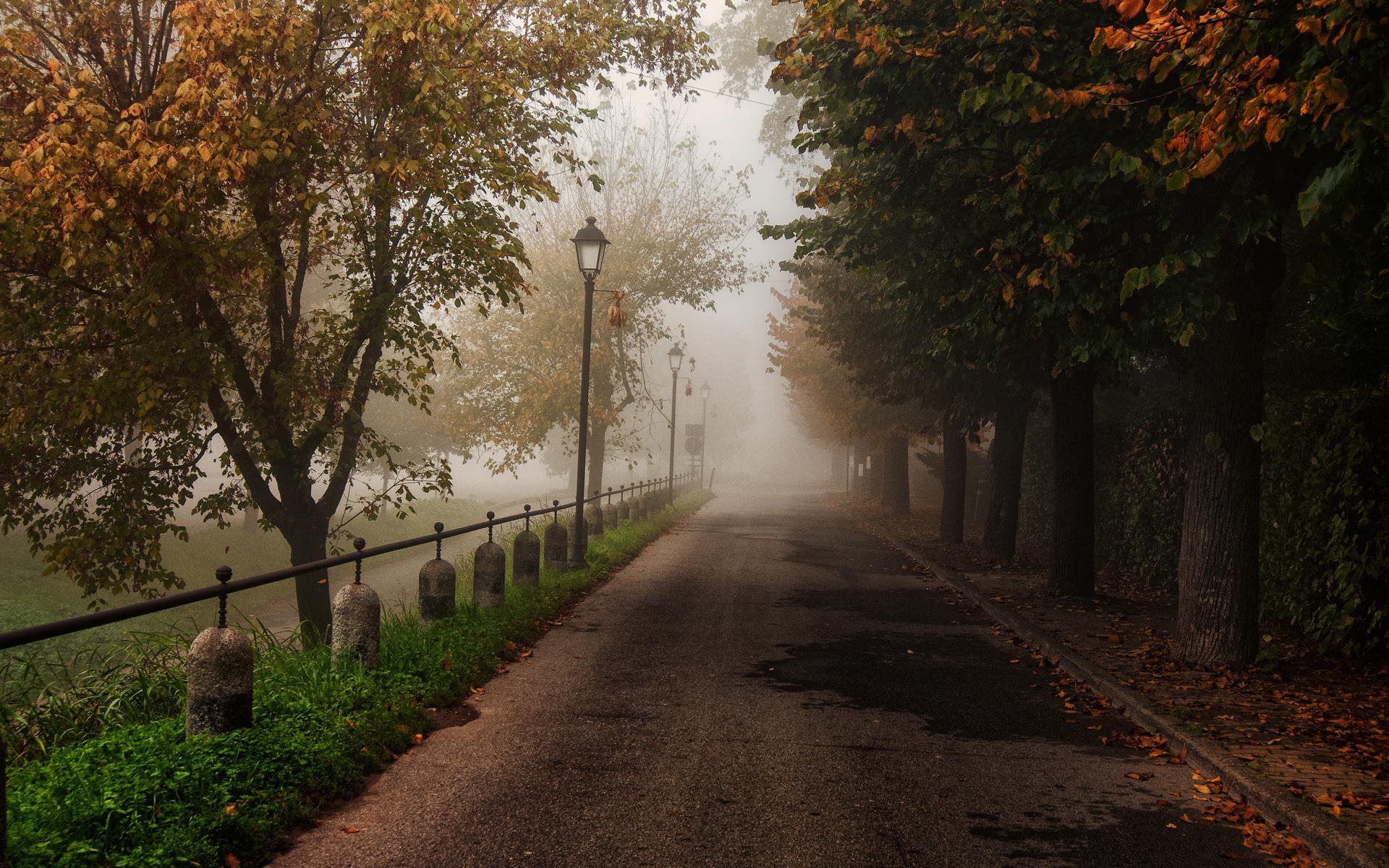 17660 скачать обои Пейзаж, Дороги, Осень - заставки и картинки бесплатно