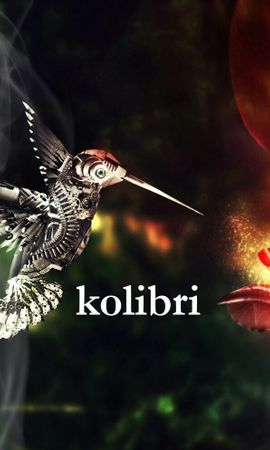 21116 download wallpaper Animals, Birds, Robots, Humming-Birds screensavers and pictures for free