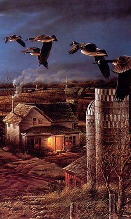 21776 скачать обои Животные, Пейзаж, Птицы, Дома, Поля, Утки, Рисунки - заставки и картинки бесплатно