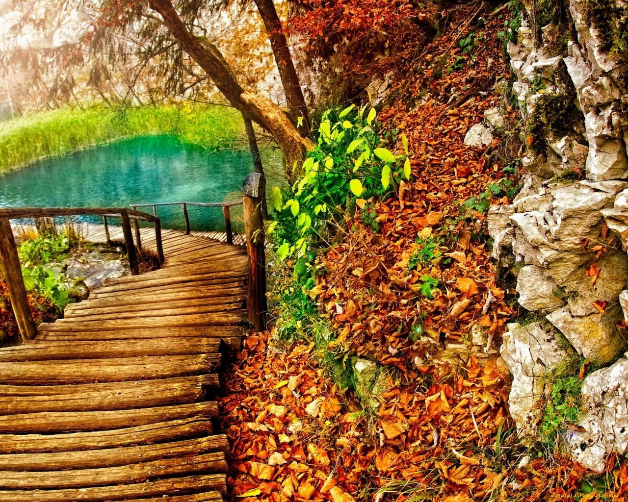 20396 скачать обои Пейзаж, Деревья, Осень, Озера - заставки и картинки бесплатно