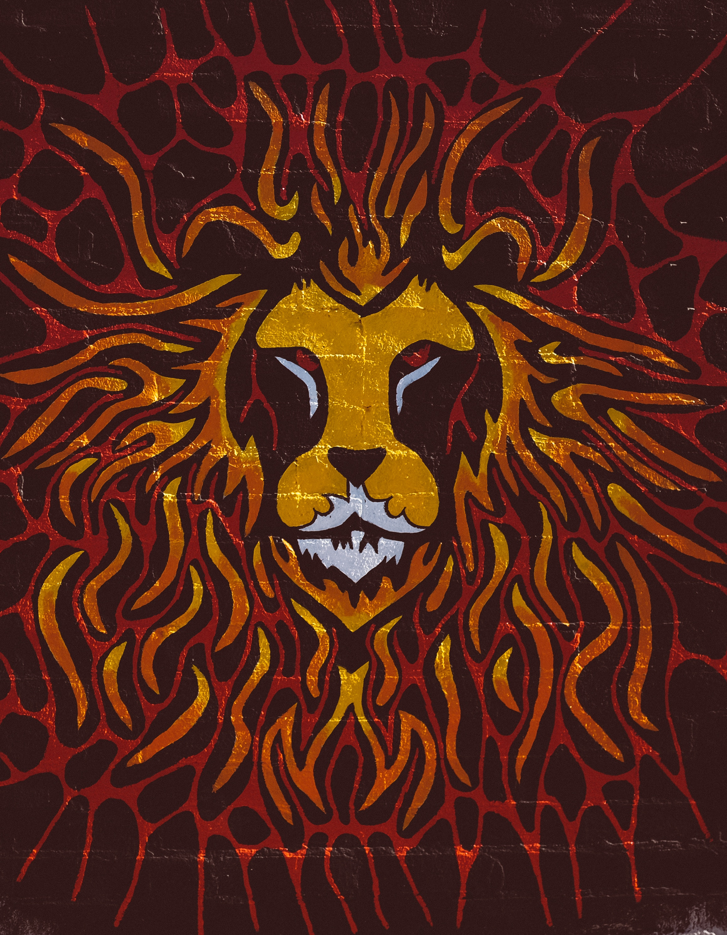 124309 download wallpaper Lion, Art, Wall, Graffiti screensavers and pictures for free