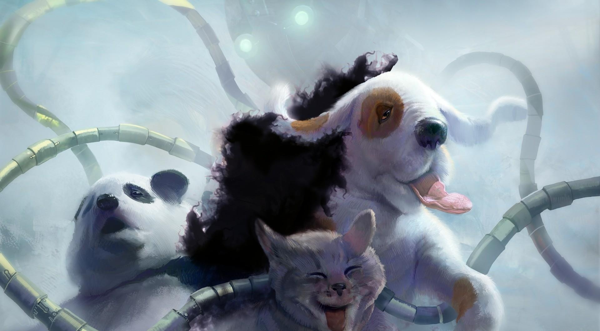 82777 download wallpaper Fantasy, Panda, Cat, Dog, Tentacles, Robot, Octopus screensavers and pictures for free