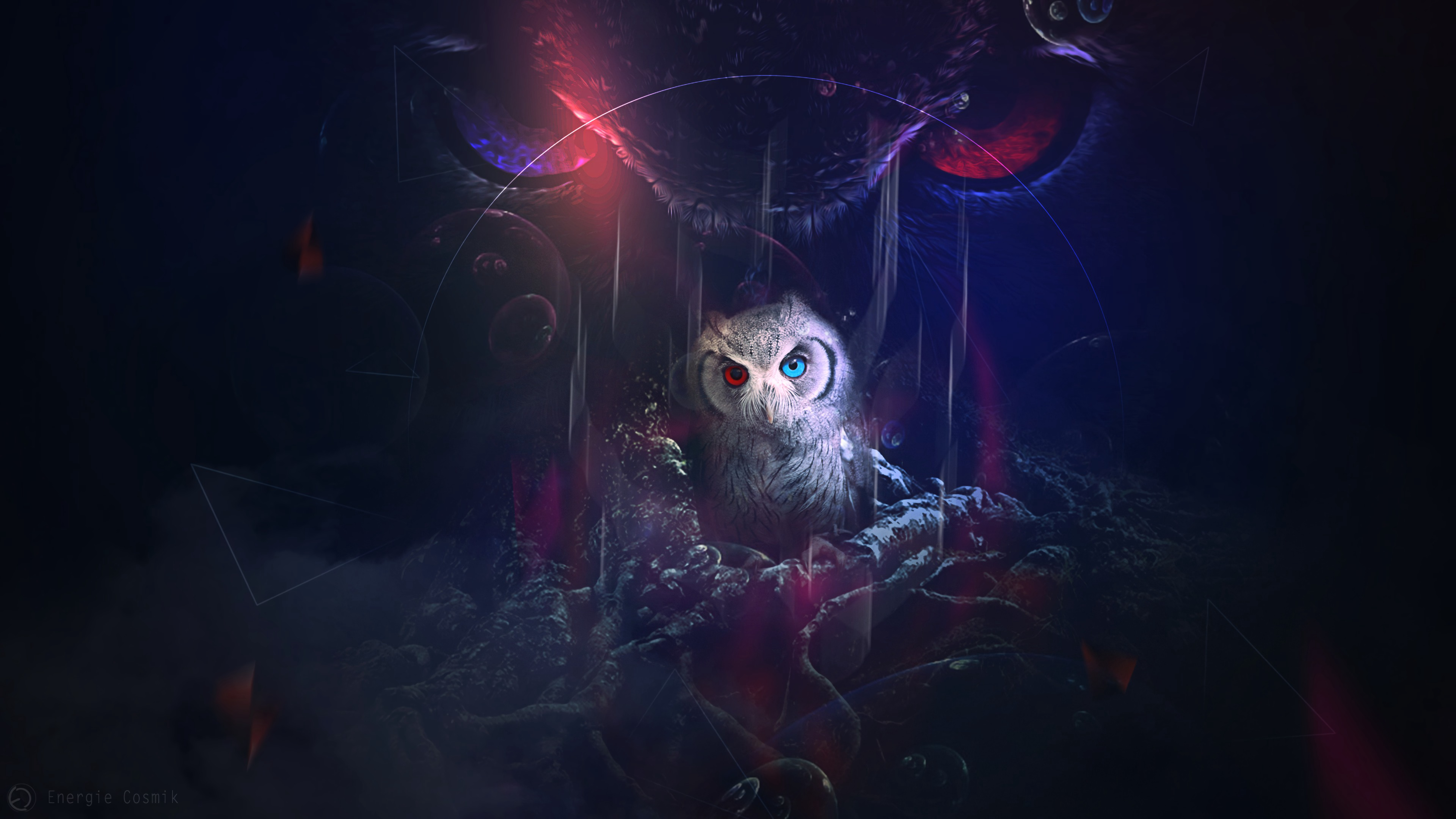 61957 download wallpaper Owl, Bird, Art, Eyes, Multicolored, Motley screensavers and pictures for free