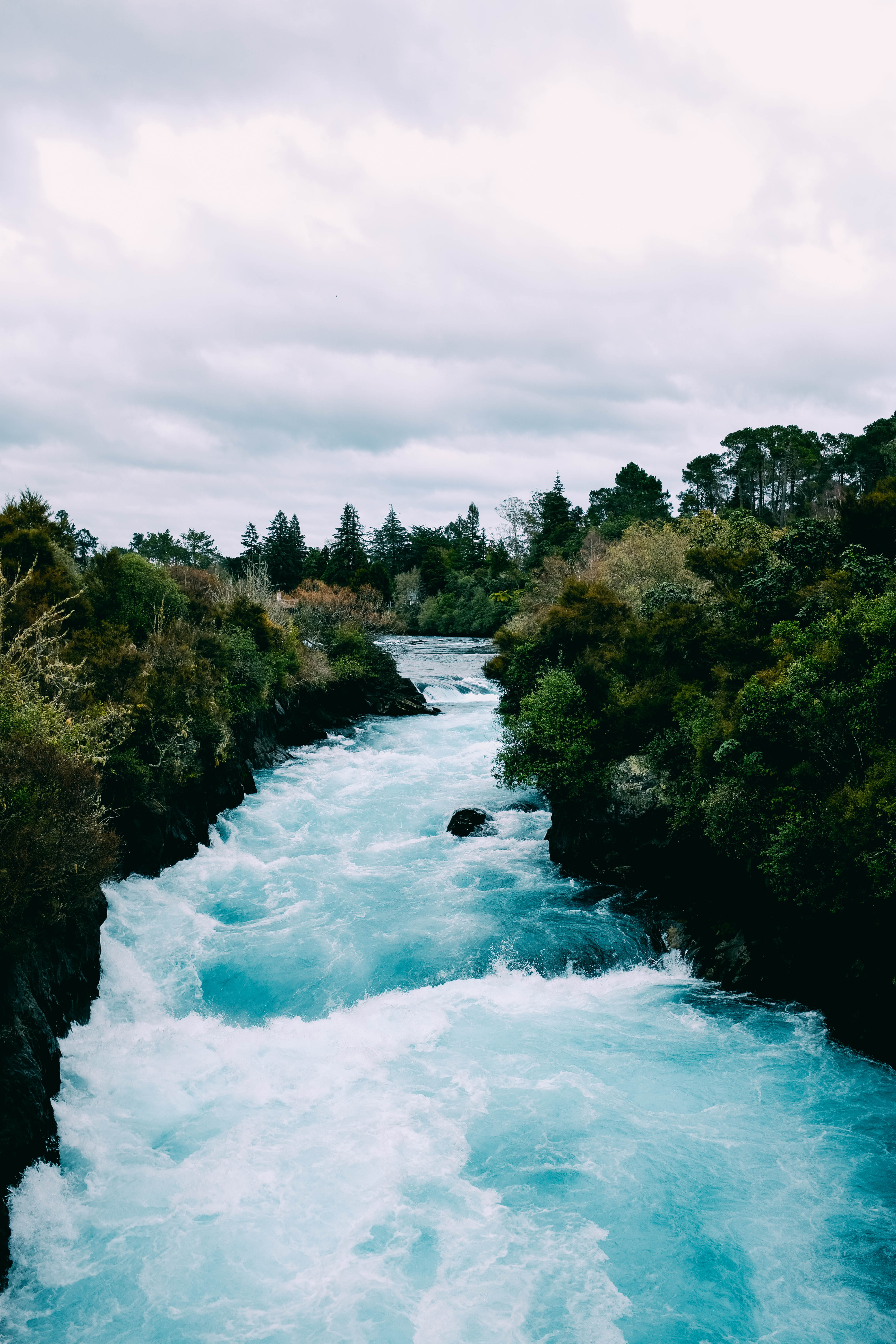 136626 download wallpaper Nature, Rivers, Trees, Waves, Flow screensavers and pictures for free