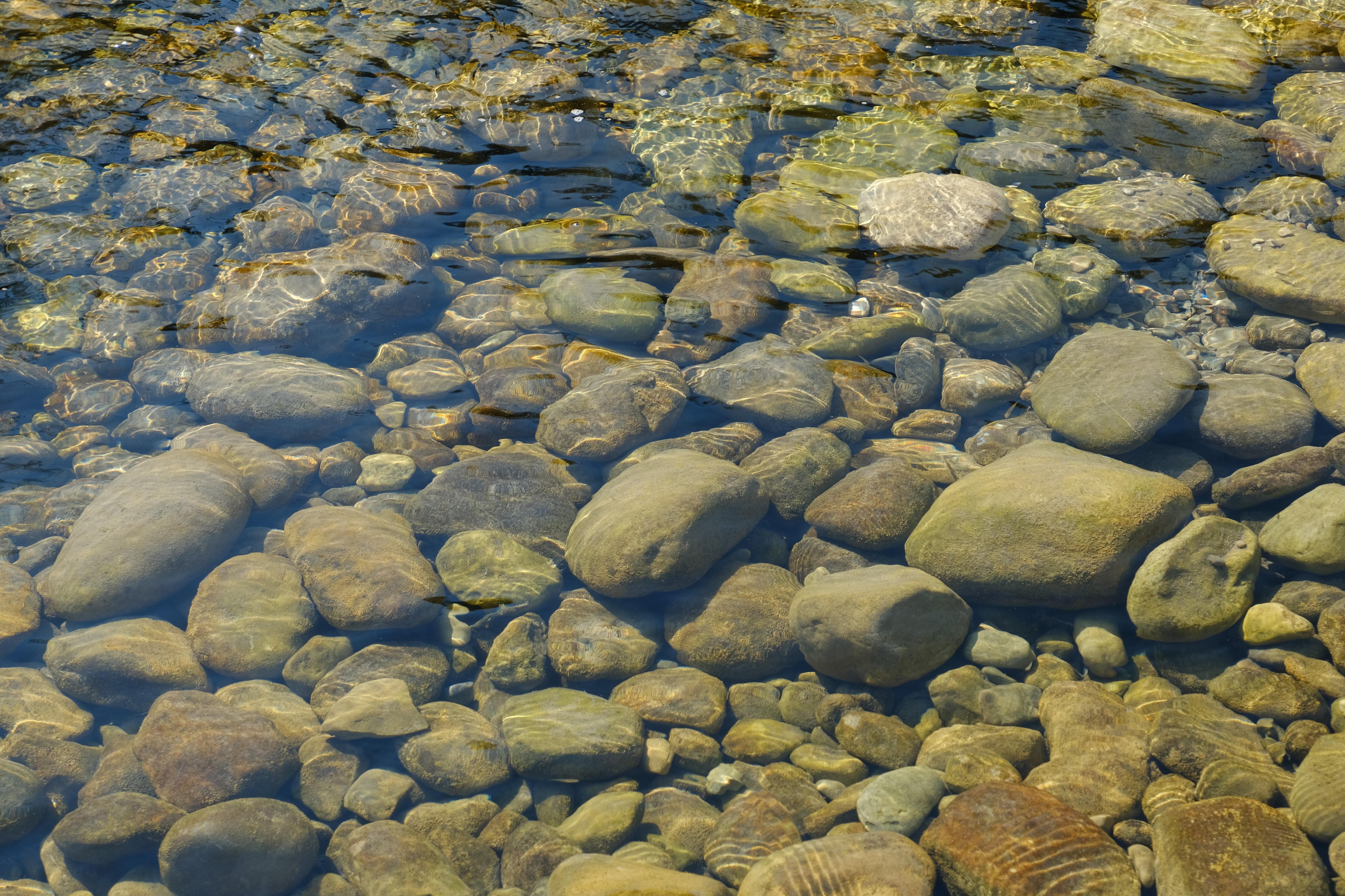 99379 Заставки и Обои Вода на телефон. Скачать Вода, Природа, Камни, Прозрачный, Водоем, Дно картинки бесплатно