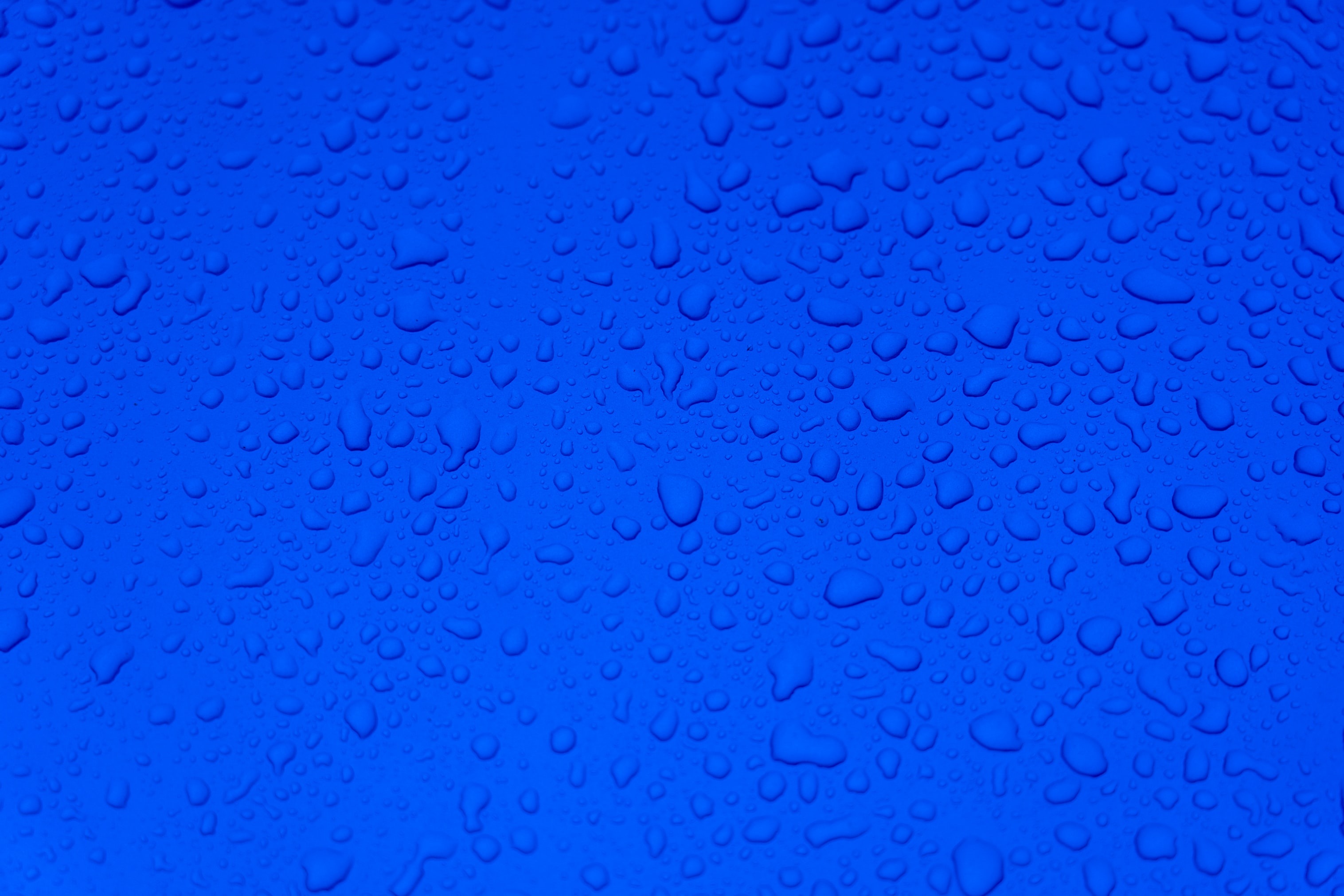 62553 Screensavers and Wallpapers Drops for phone. Download Drops, Water, Macro, Surface pictures for free