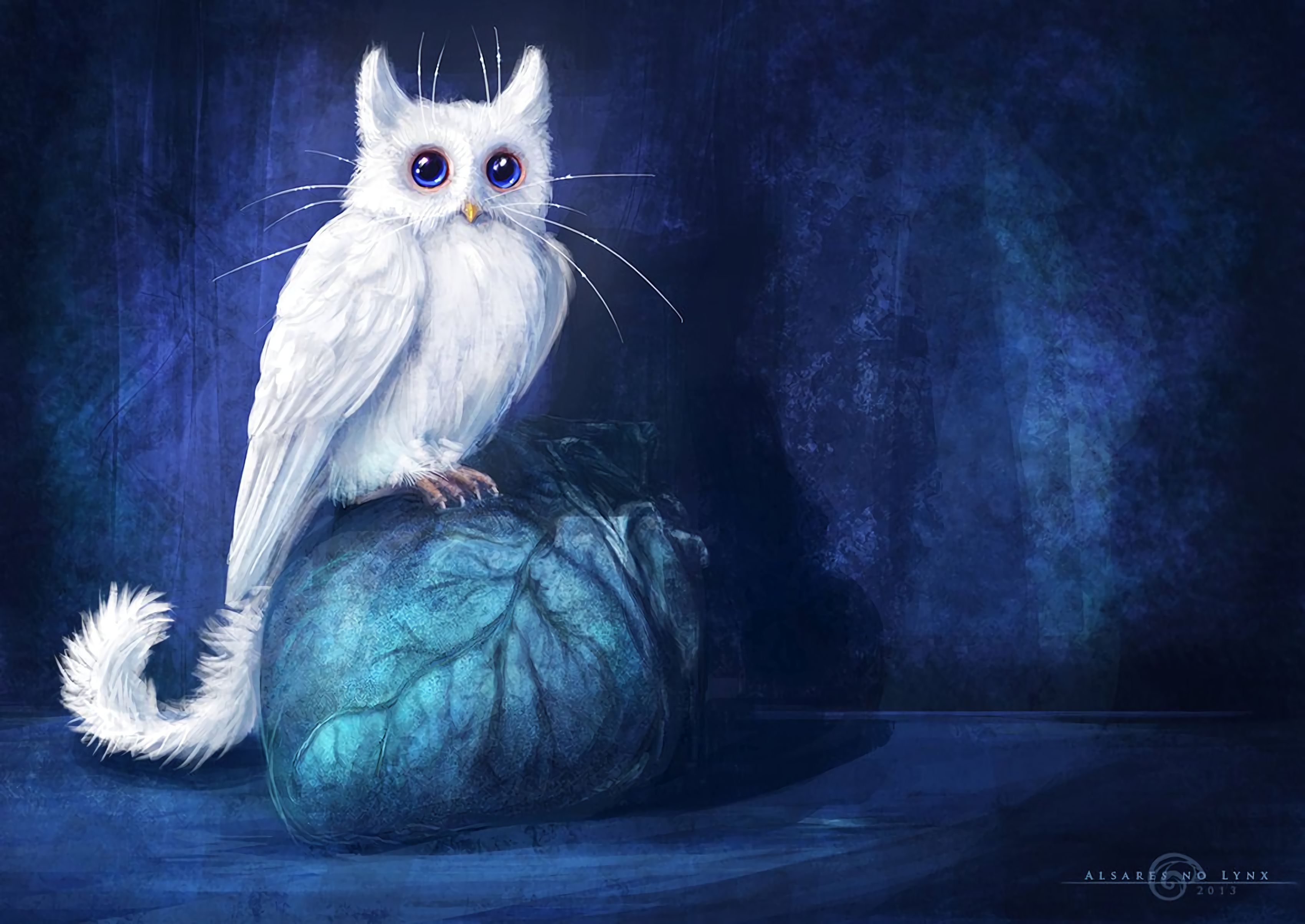 95417 free wallpaper 720x1280 for phone, download images Fantasy, Art, Owl, Cat 720x1280 for mobile