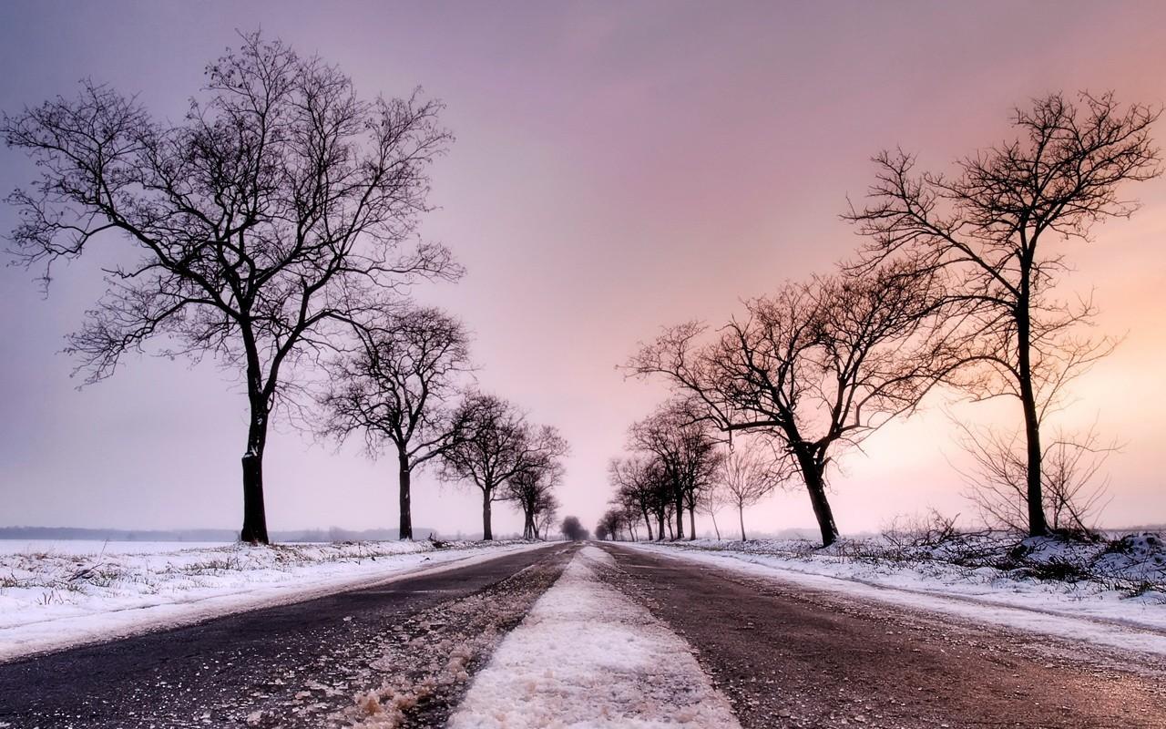Скачать картинку Пейзаж, Деревья, Дороги в телефон бесплатно.