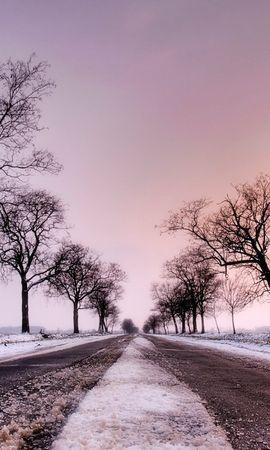 20716 скачать обои Пейзаж, Деревья, Дороги - заставки и картинки бесплатно