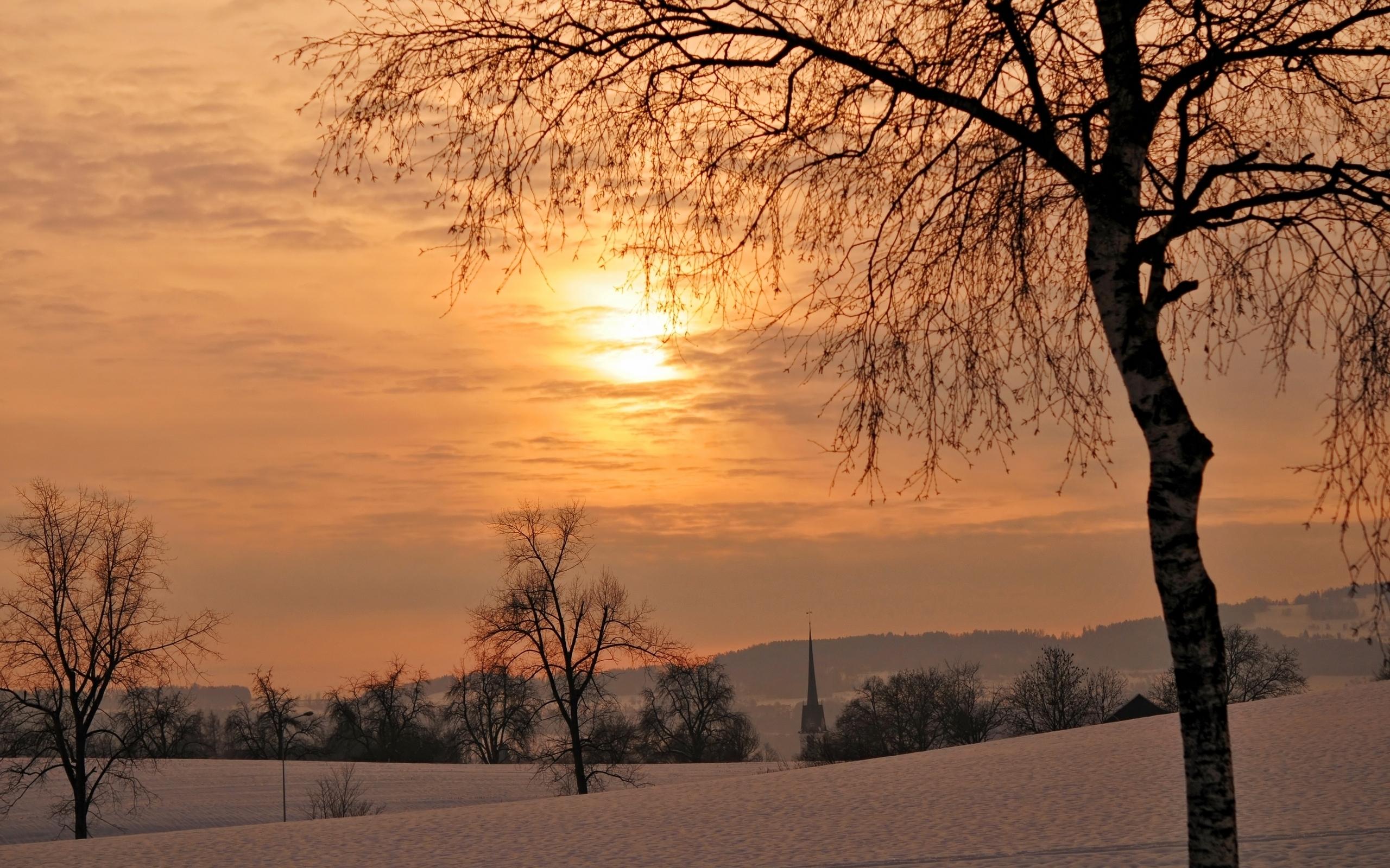 26579 скачать обои Пейзаж, Деревья, Закат, Поля, Снег - заставки и картинки бесплатно