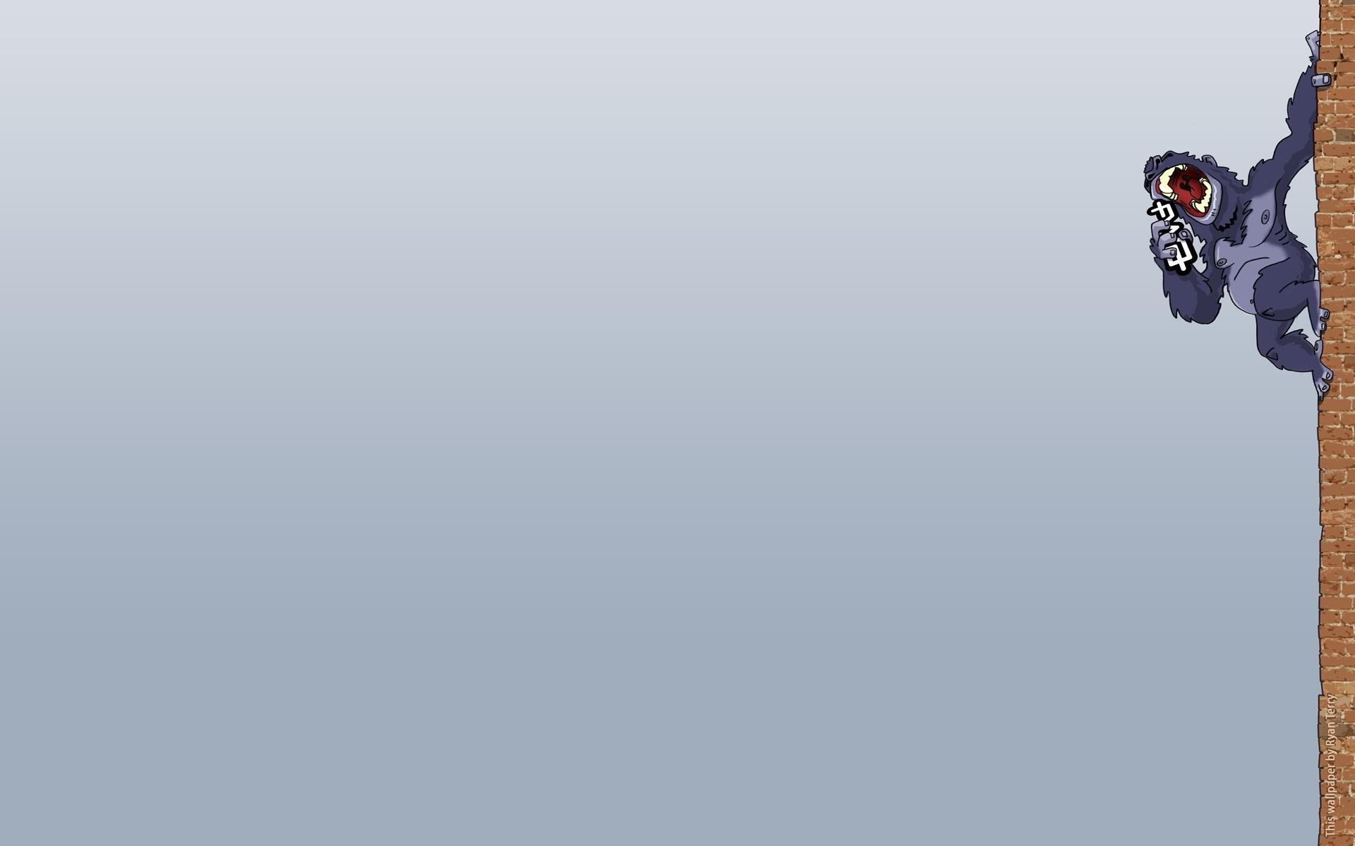 5553 descargar fondo de pantalla Divertido, Imágenes, Monos: protectores de pantalla e imágenes gratis