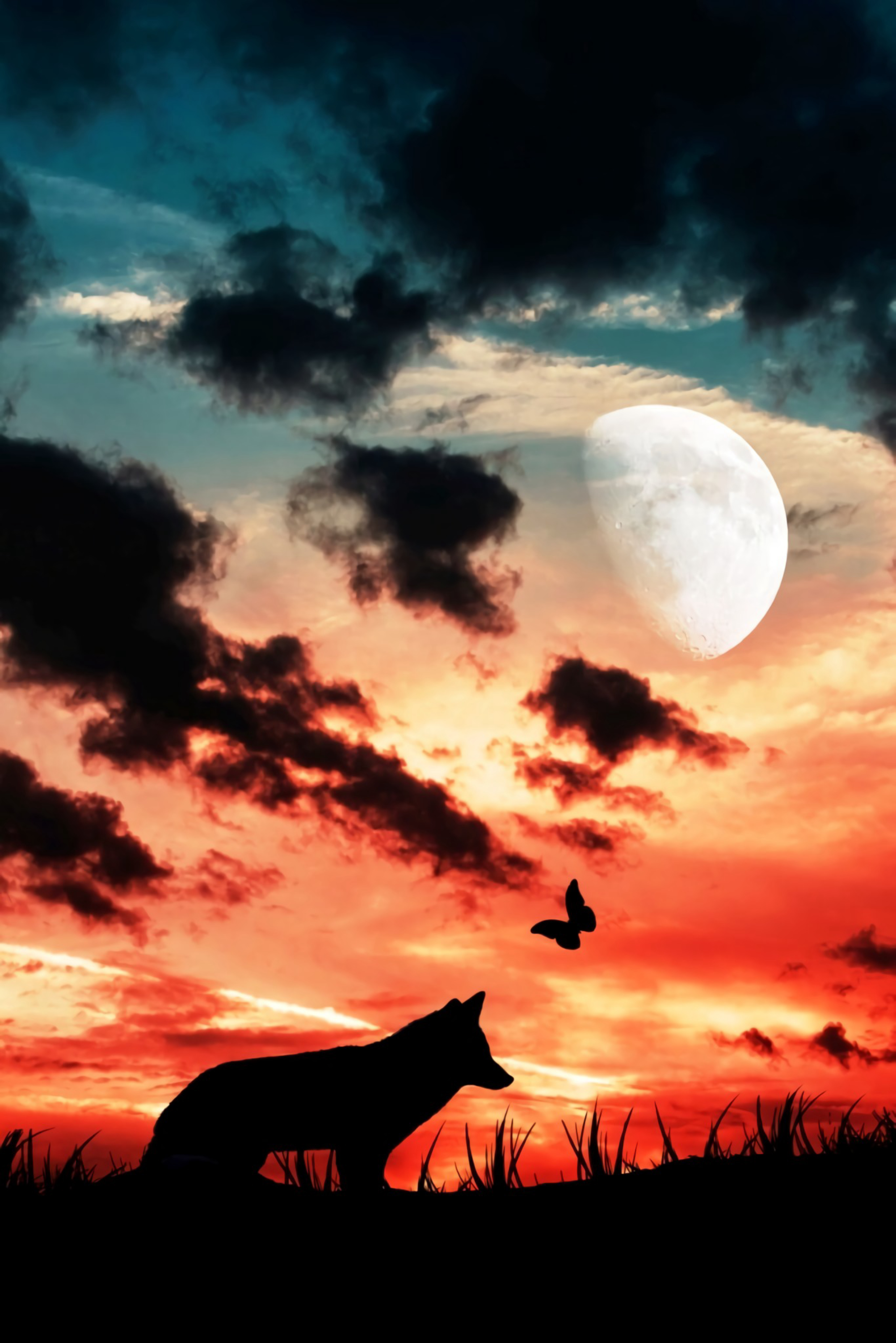 79875 Screensavers and Wallpapers Moon for phone. Download Dark, Wolf, Silhouette, Moon, Clouds, Butterfly pictures for free