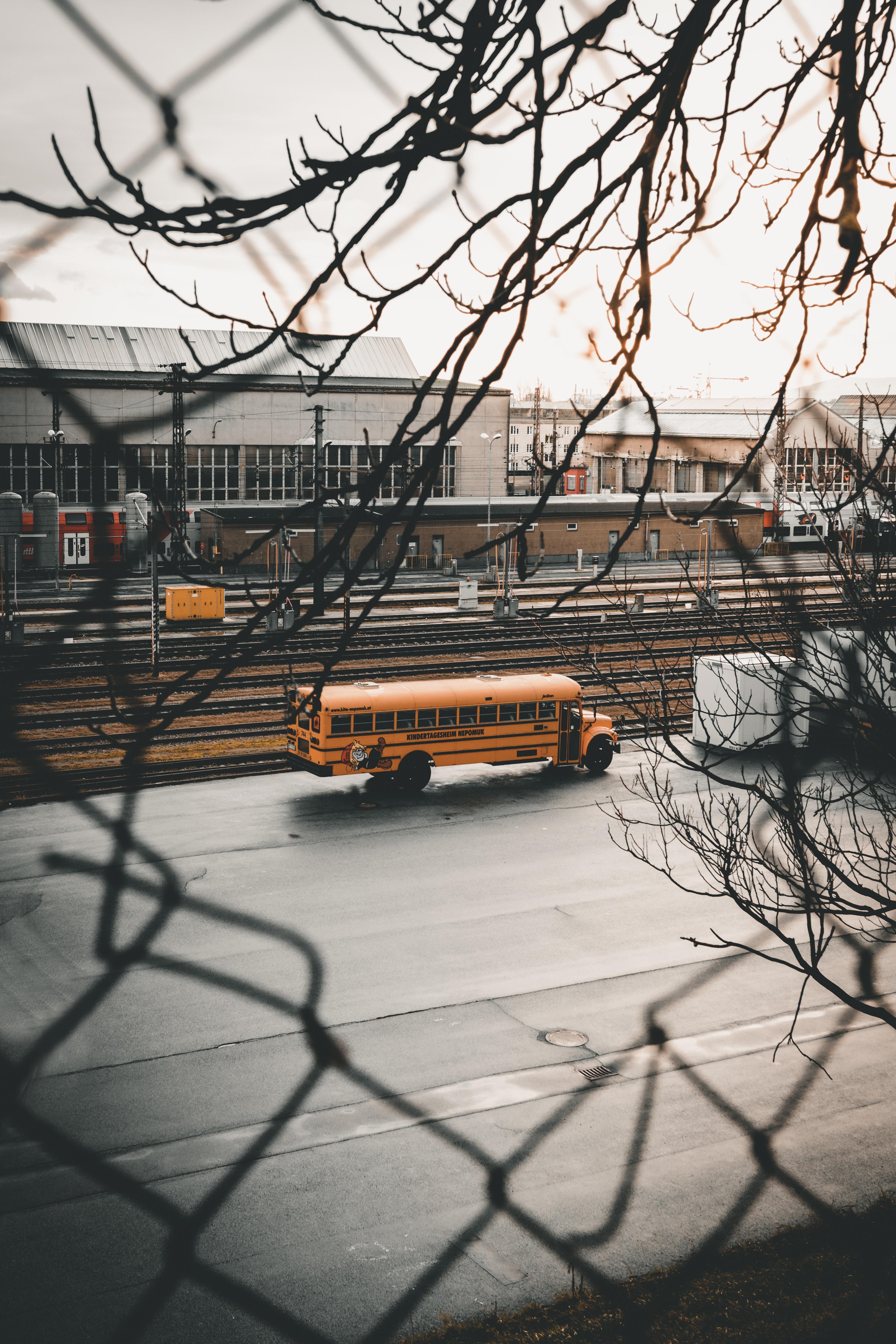 82643 скачать обои Тачки (Cars), Город, Дорога, Ветки, Автобус - заставки и картинки бесплатно