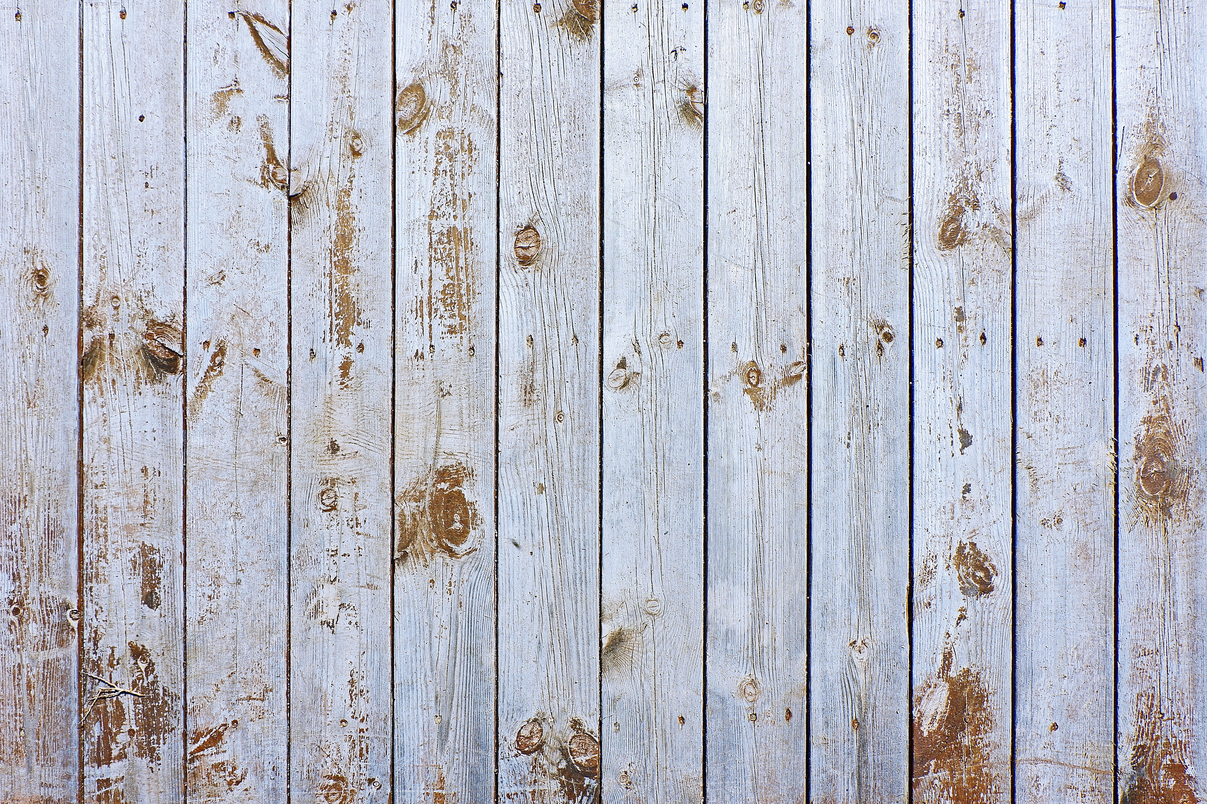 59350 download wallpaper Textures, Texture, Wood, Wooden, Surface, Planks, Board screensavers and pictures for free