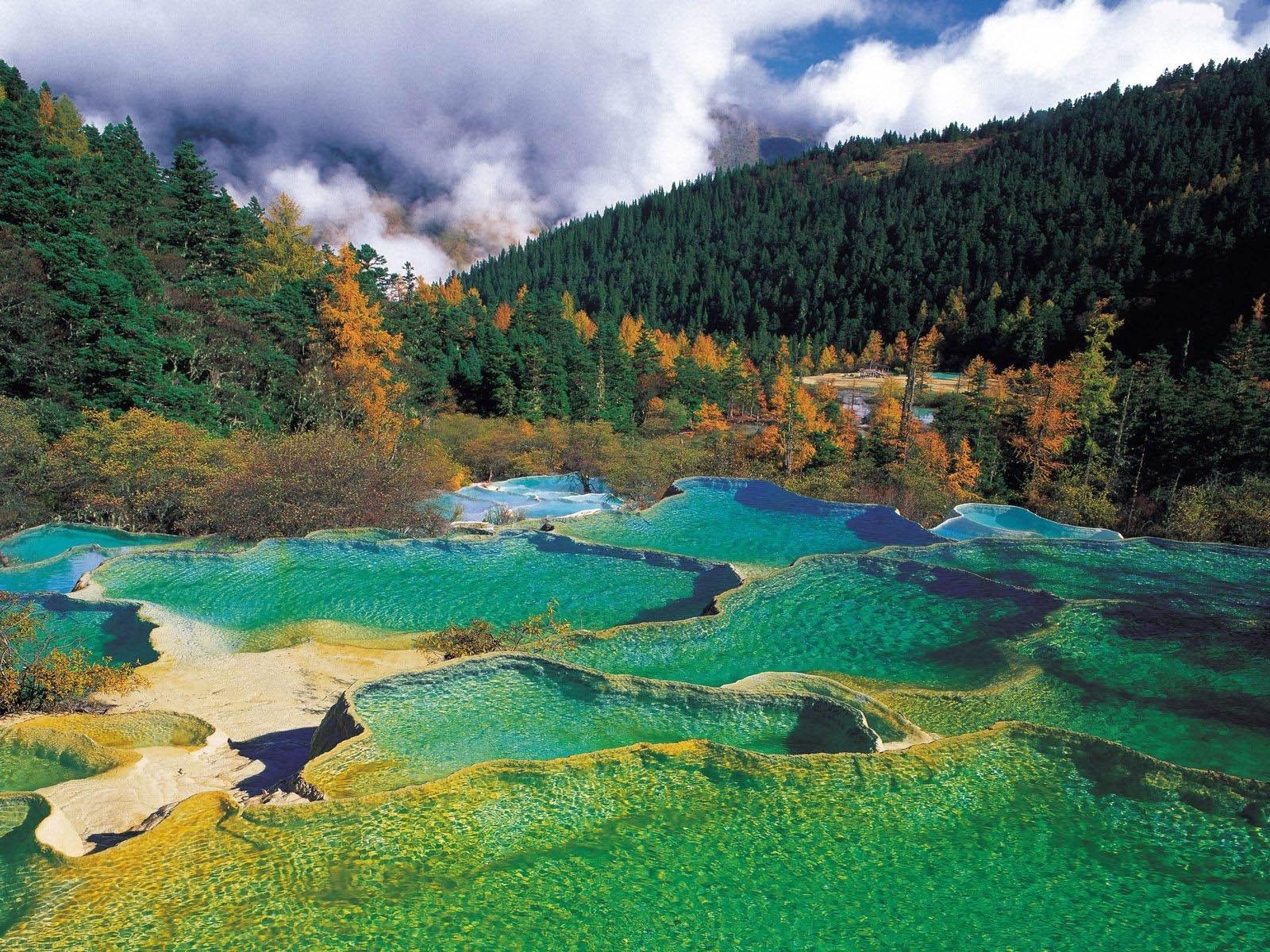 8127 скачать обои Пейзаж, Природа, Вода, Деревья, Елки - заставки и картинки бесплатно
