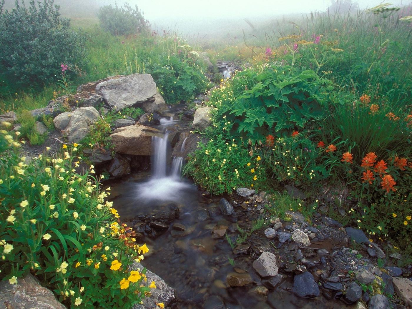 41378 скачать обои Пейзаж, Цветы, Водопады - заставки и картинки бесплатно