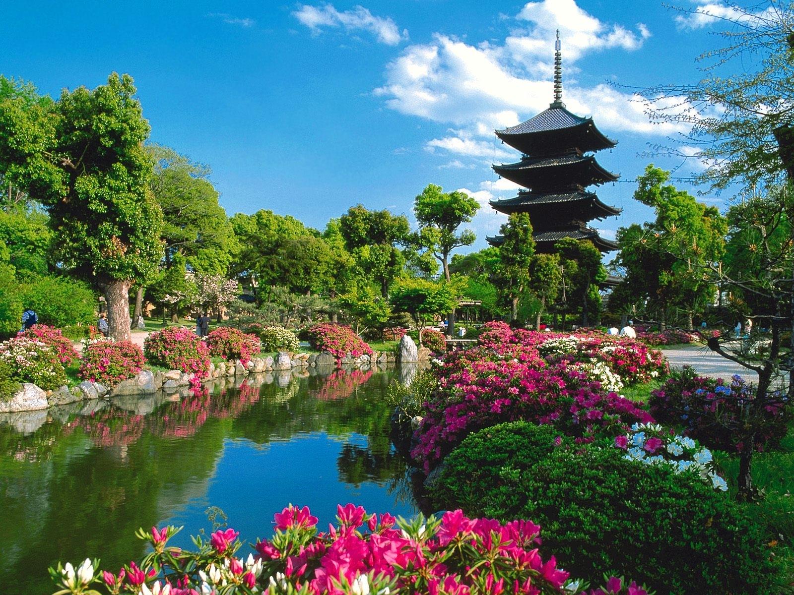 4144 Hintergrundbild herunterladen Blumen, Pflanzen, Landschaft, Flüsse, Sky, Asien - Bildschirmschoner und Bilder kostenlos