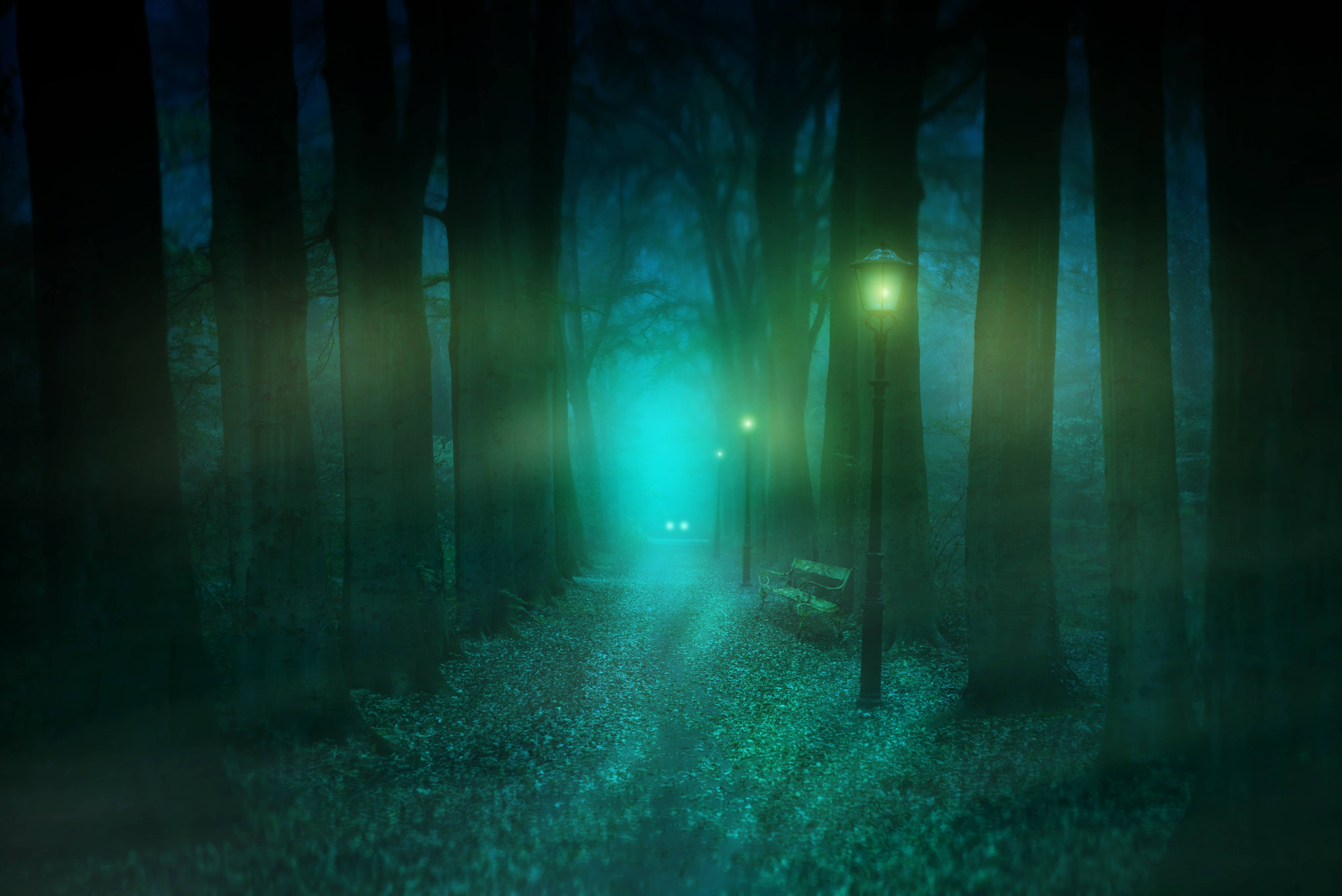 128219 Screensavers and Wallpapers Bench for phone. Download Nature, Park, Fog, Lamp, Lantern, Bench, Mystical, Mystic pictures for free