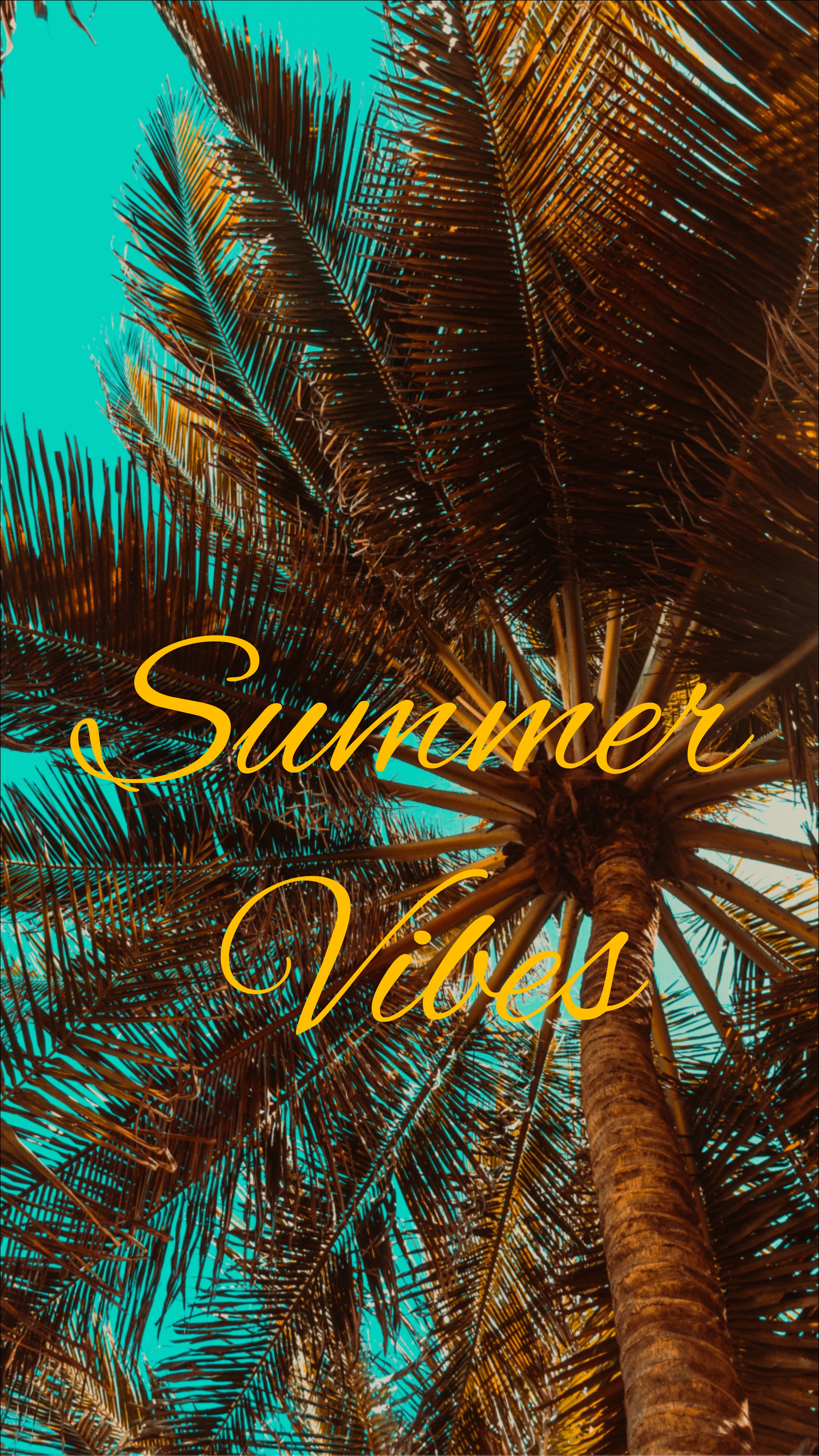 70254 Screensavers and Wallpapers Summer for phone. Download Summer, Words, Palm, Mood, Vibration, Vibrations pictures for free