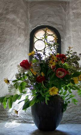 13940 скачать обои Растения, Цветы - заставки и картинки бесплатно