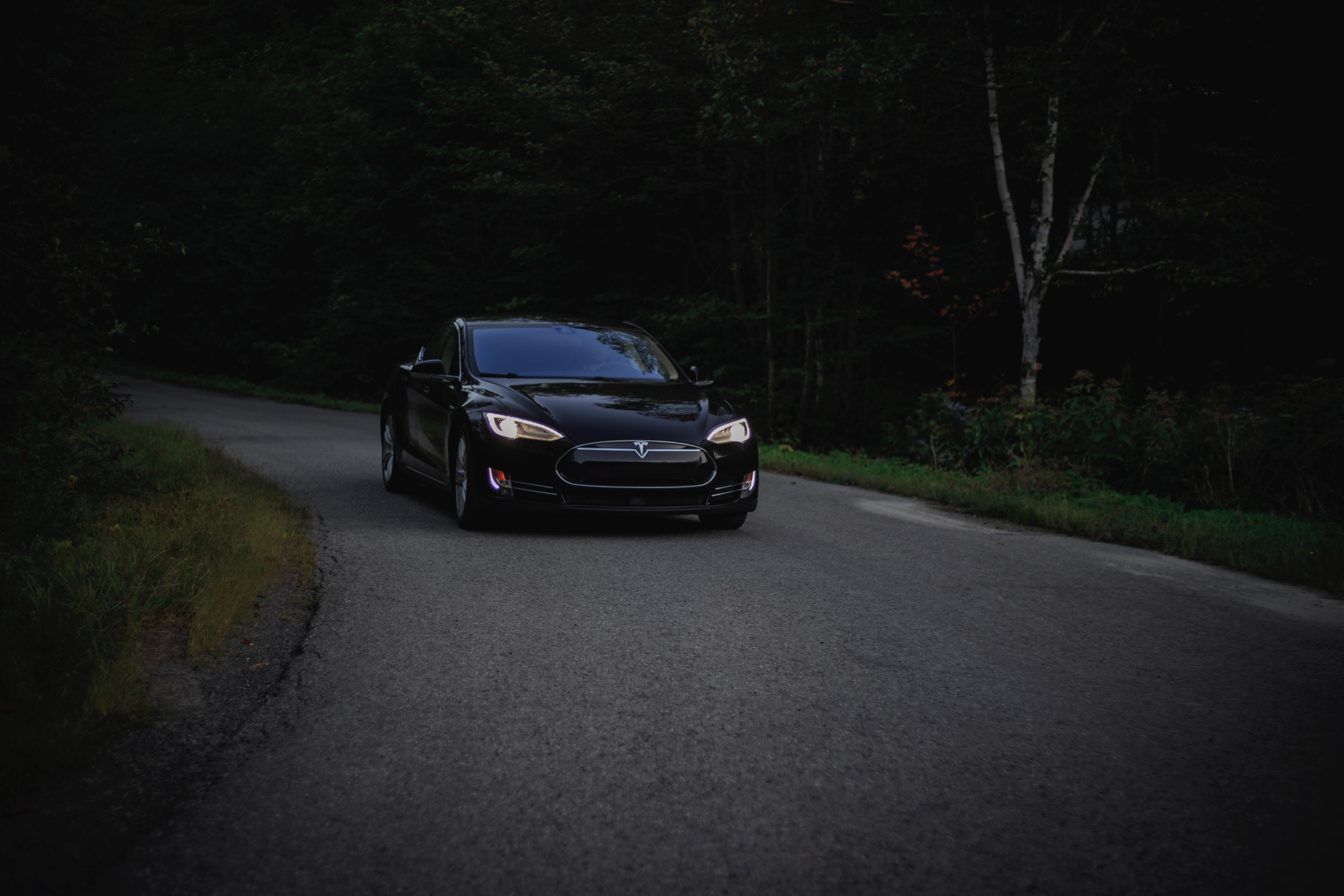 149060 скачать обои Асфальт, Тачки (Cars), Лес, Автомобиль, Темный, Tesla - заставки и картинки бесплатно