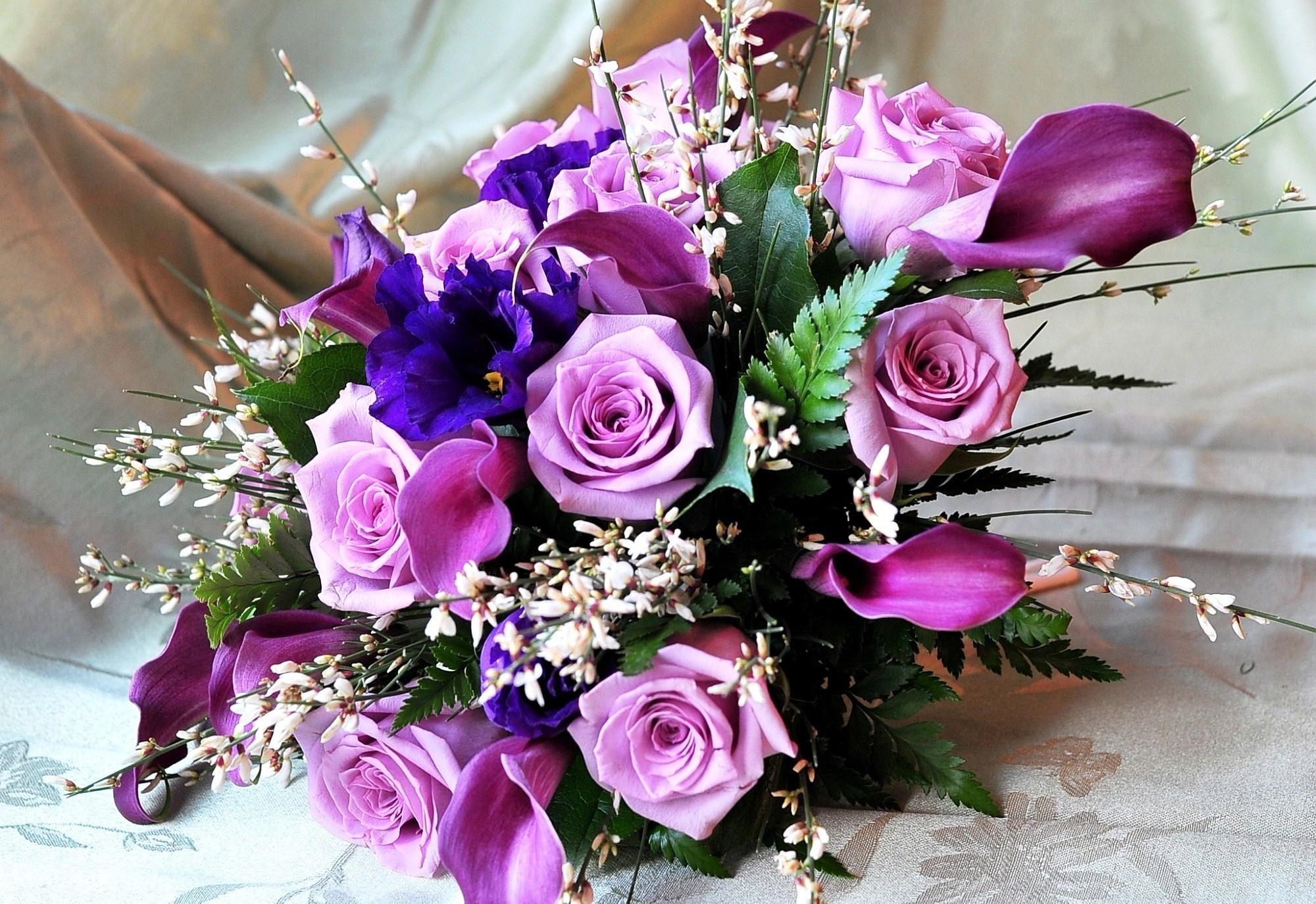 124365 Заставки и Обои Розы на телефон. Скачать Розы, Цветы, Листья, Оформление, Букет, Каллы картинки бесплатно