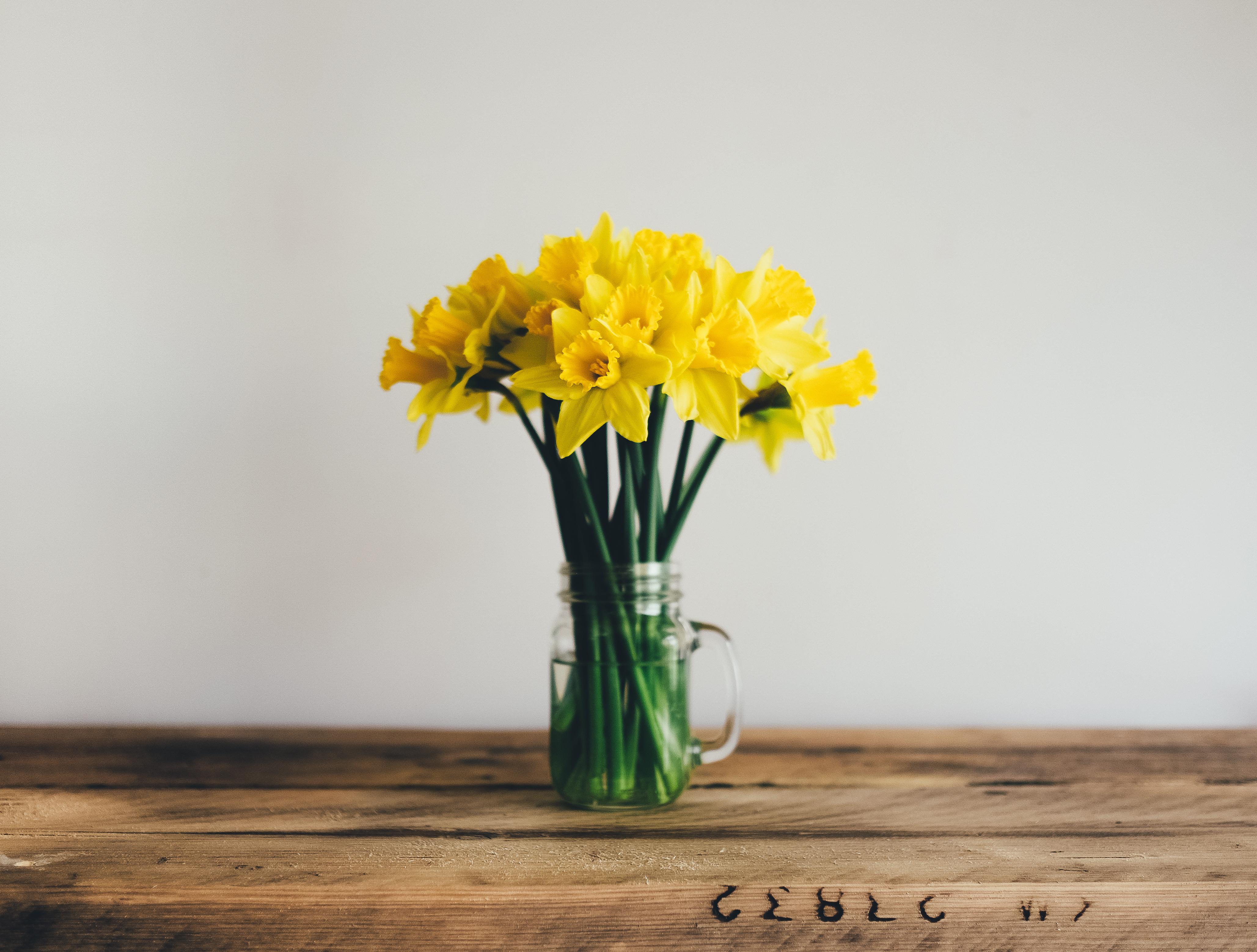 98981 Заставки и Обои Нарциссы на телефон. Скачать Цветы, Нарциссы, Букет, Ваза картинки бесплатно