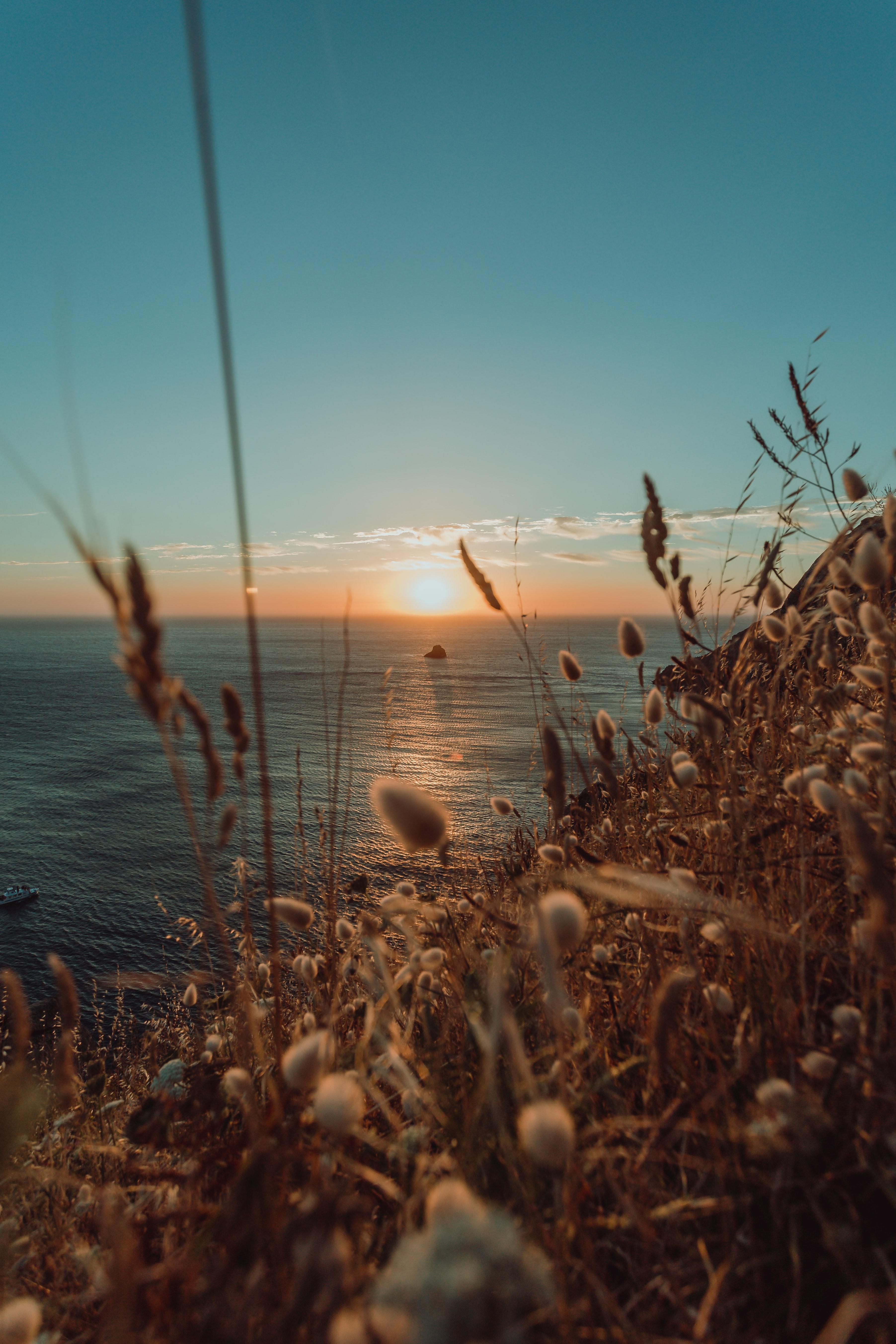 76773 Заставки и Обои Солнце на телефон. Скачать Солнце, Природа, Море, Горизонт, Колосья картинки бесплатно