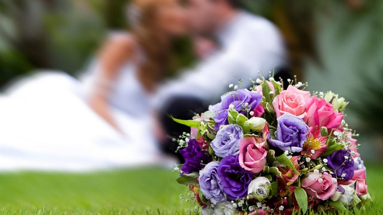 45591 скачать обои Праздники, Растения, Пейзаж, Цветы, Букеты, Свадьба - заставки и картинки бесплатно