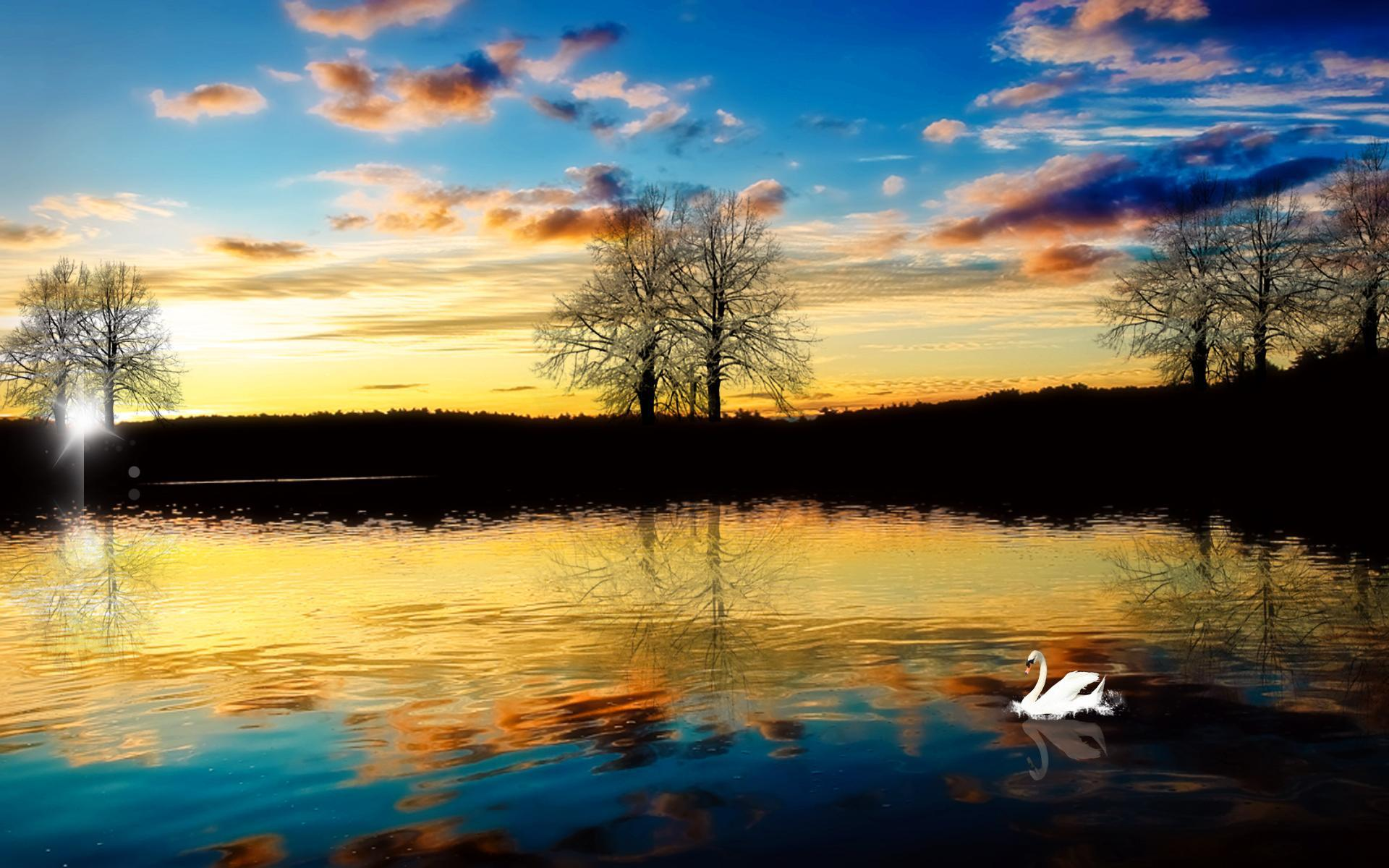 34866 download wallpaper Animals, Birds, Rivers, Swans screensavers and pictures for free