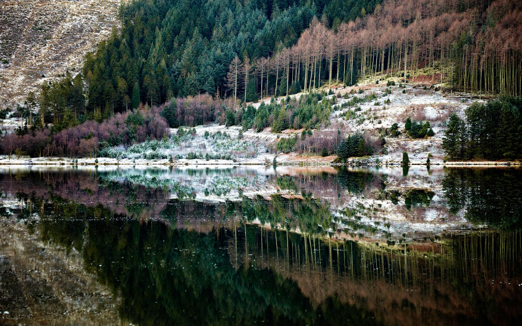 26198 скачать обои Пейзаж, Река, Деревья - заставки и картинки бесплатно