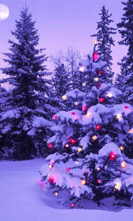 14001 descargar fondo de pantalla Vacaciones, Invierno, Árboles, Año Nuevo, Nieve, Abetos, Navidad: protectores de pantalla e imágenes gratis