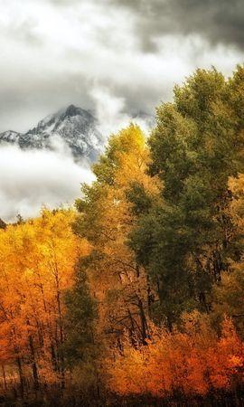 30003 скачать обои Пейзаж, Деревья, Горы, Осень - заставки и картинки бесплатно