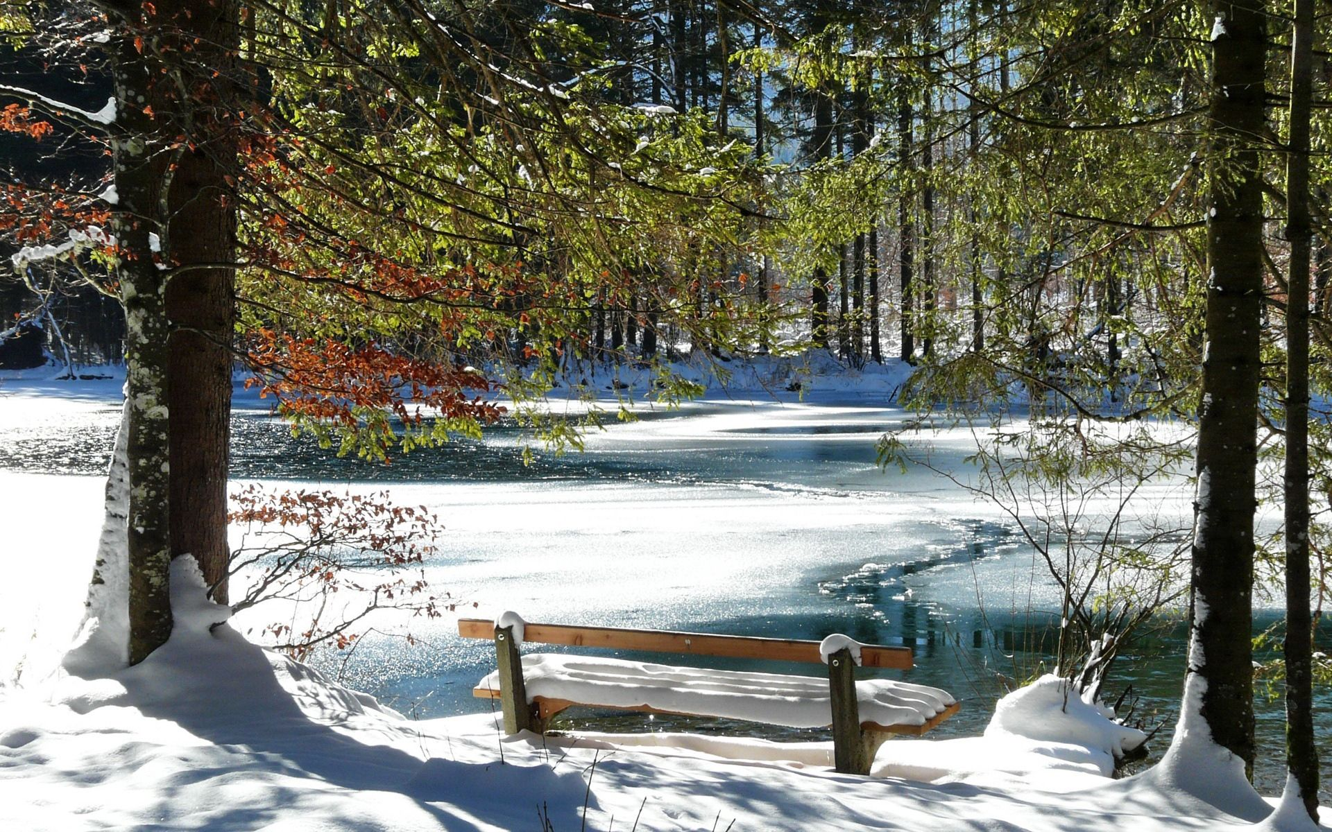56730 Screensavers and Wallpapers Bench for phone. Download Nature, Trees, Ice, Snow, Lake, Shore, Bank, Bench, Spring, Melting pictures for free