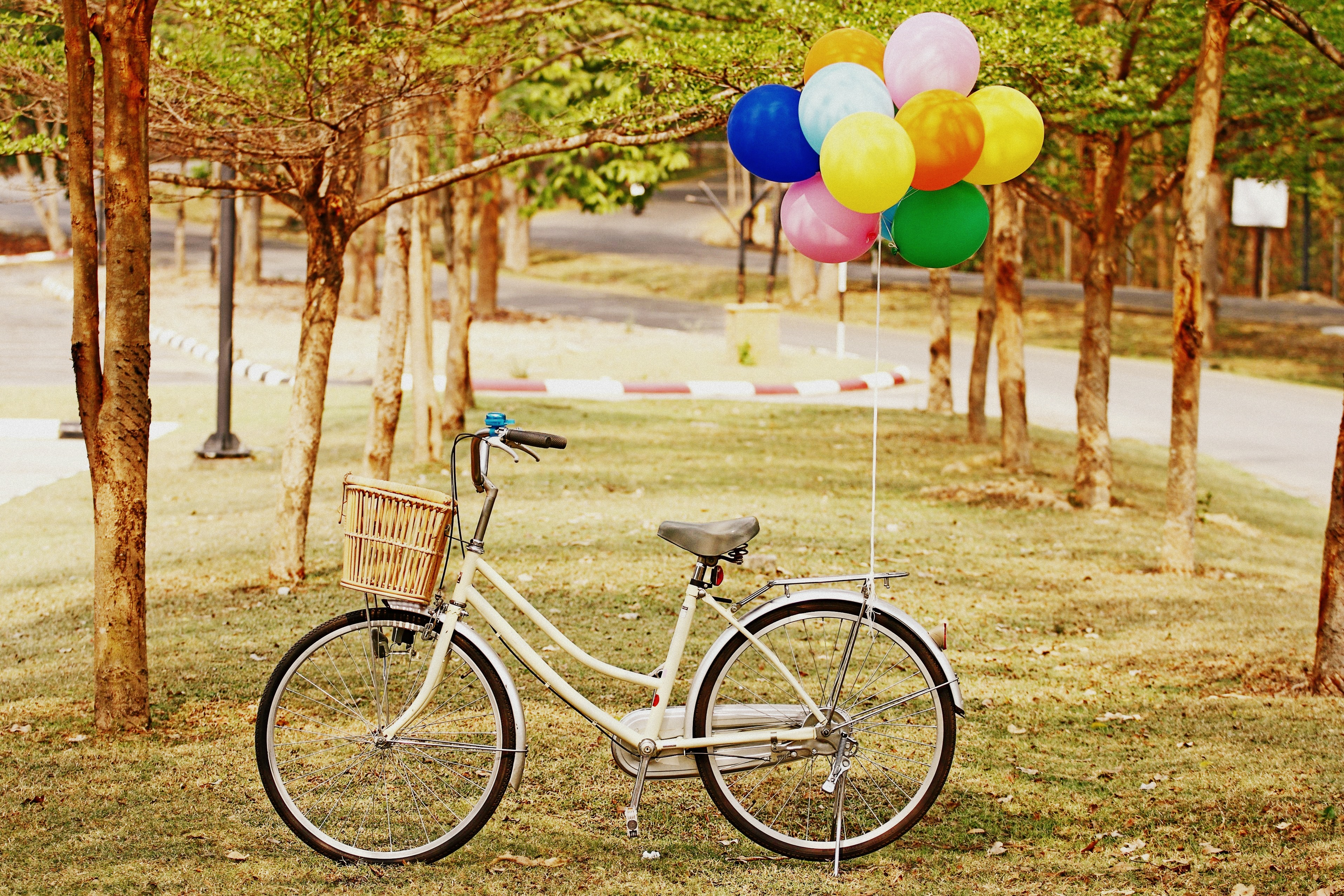 111587 download wallpaper Balloons, Grass, Miscellanea, Miscellaneous, Park, Bicycle, Air Balloons screensavers and pictures for free