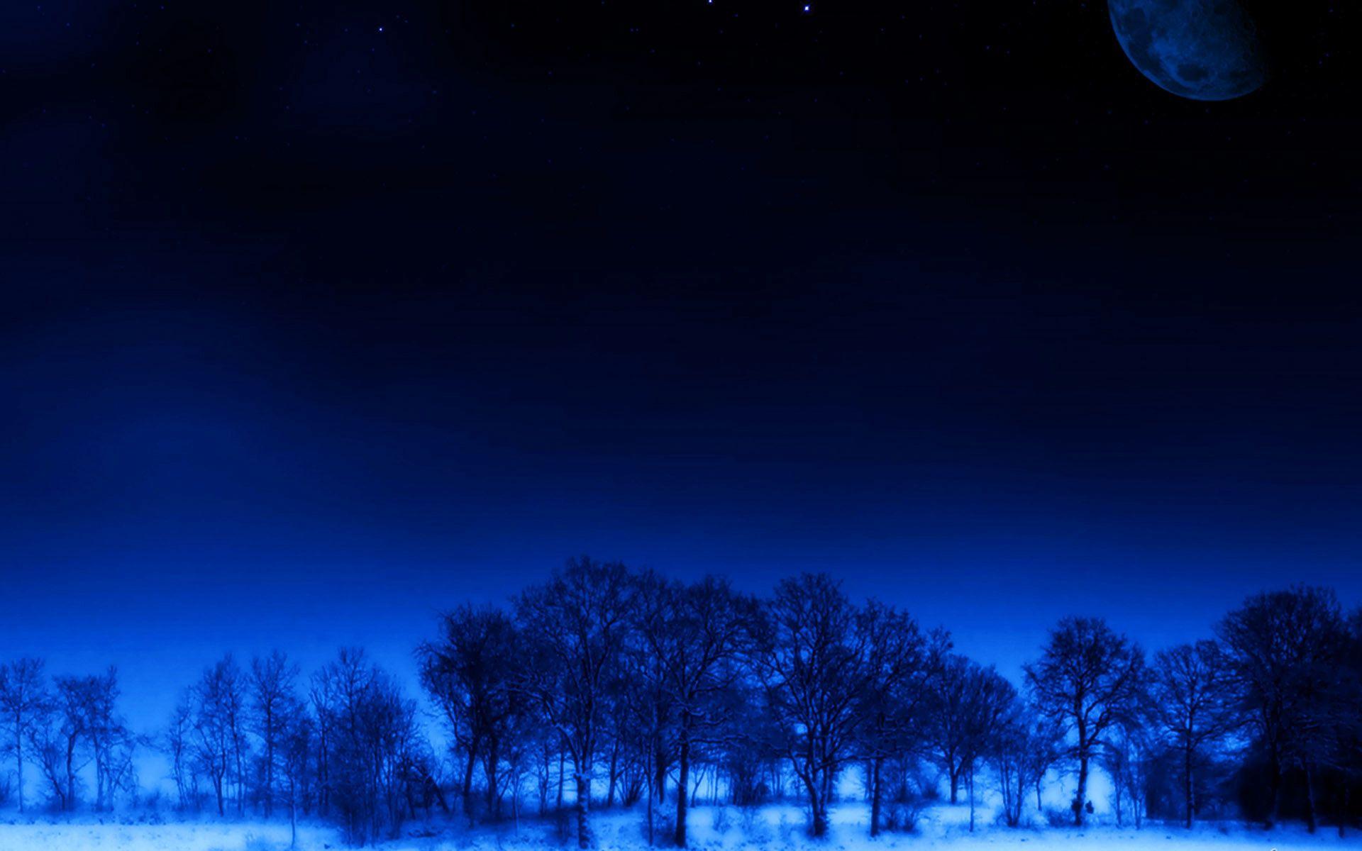 59636 скачать обои Природа, Ночь, Луна, Деревья, Сон, Звезды - заставки и картинки бесплатно