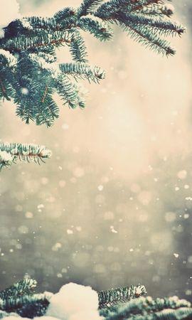 20137 скачать обои Растения, Пейзаж, Зима, Снег, Елки - заставки и картинки бесплатно